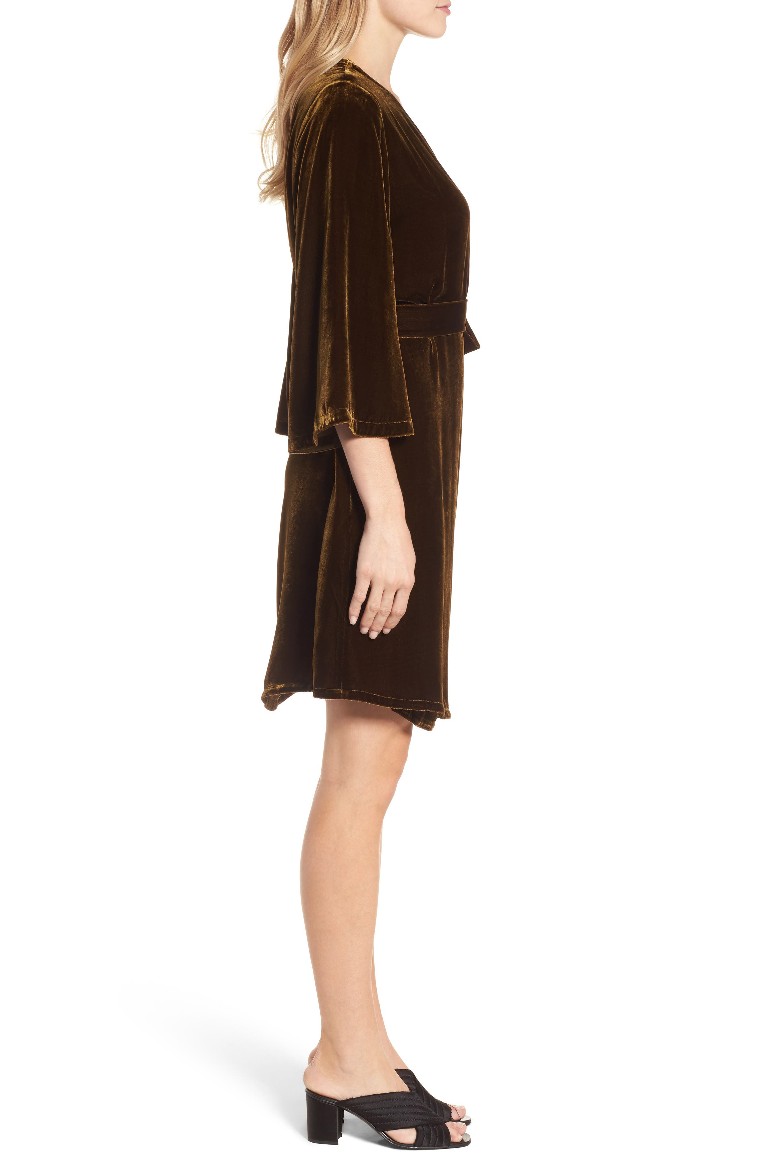 Velvet Wrap Dress,                             Alternate thumbnail 3, color,                             Serpentine