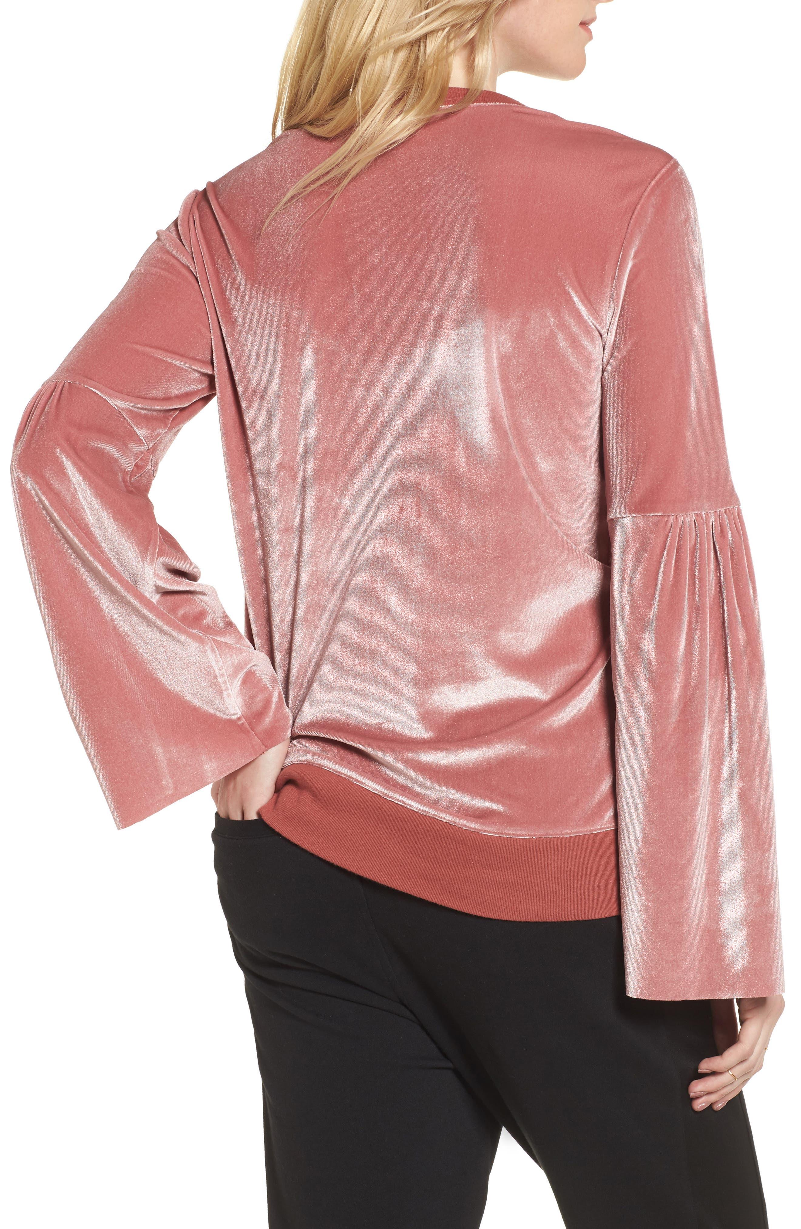 Alternate Image 2  - Treasure & Bond Velour Sweatshirt