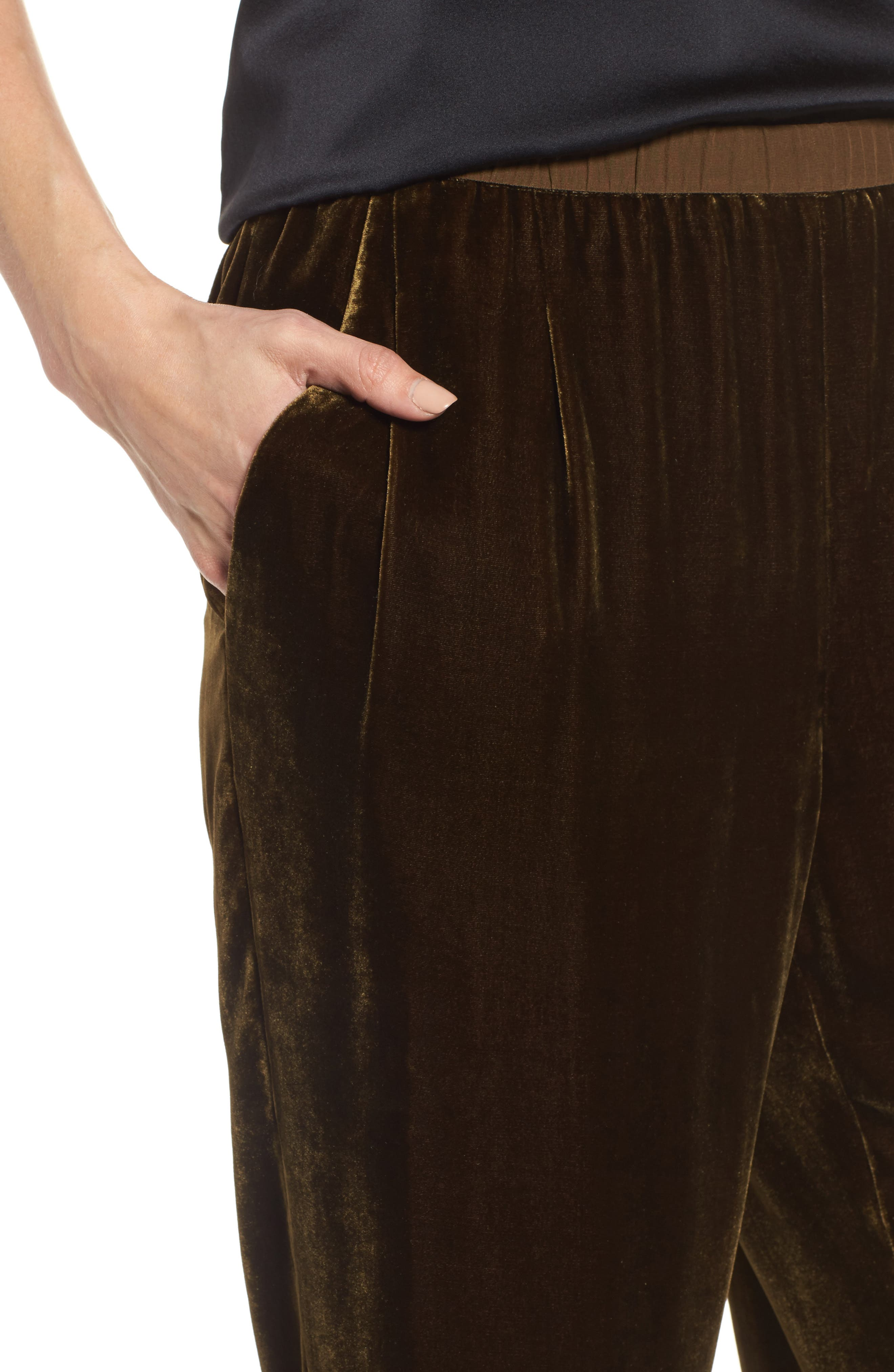 Alternate Image 4  - Eileen Fisher Velvet Ankle Pants (Regular & Petite)