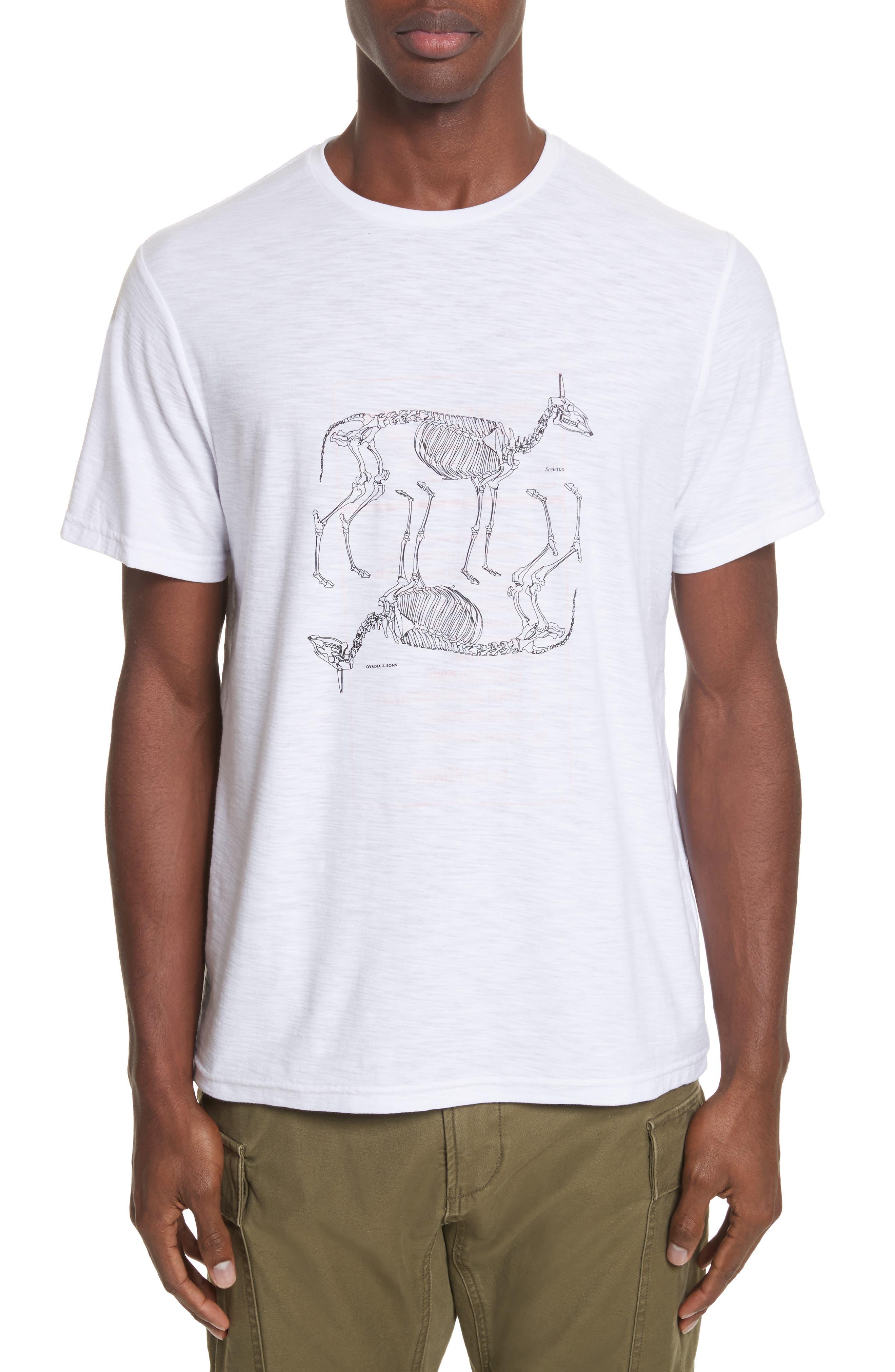 Animal Skeleton Graphic T-Shirt,                         Main,                         color, White