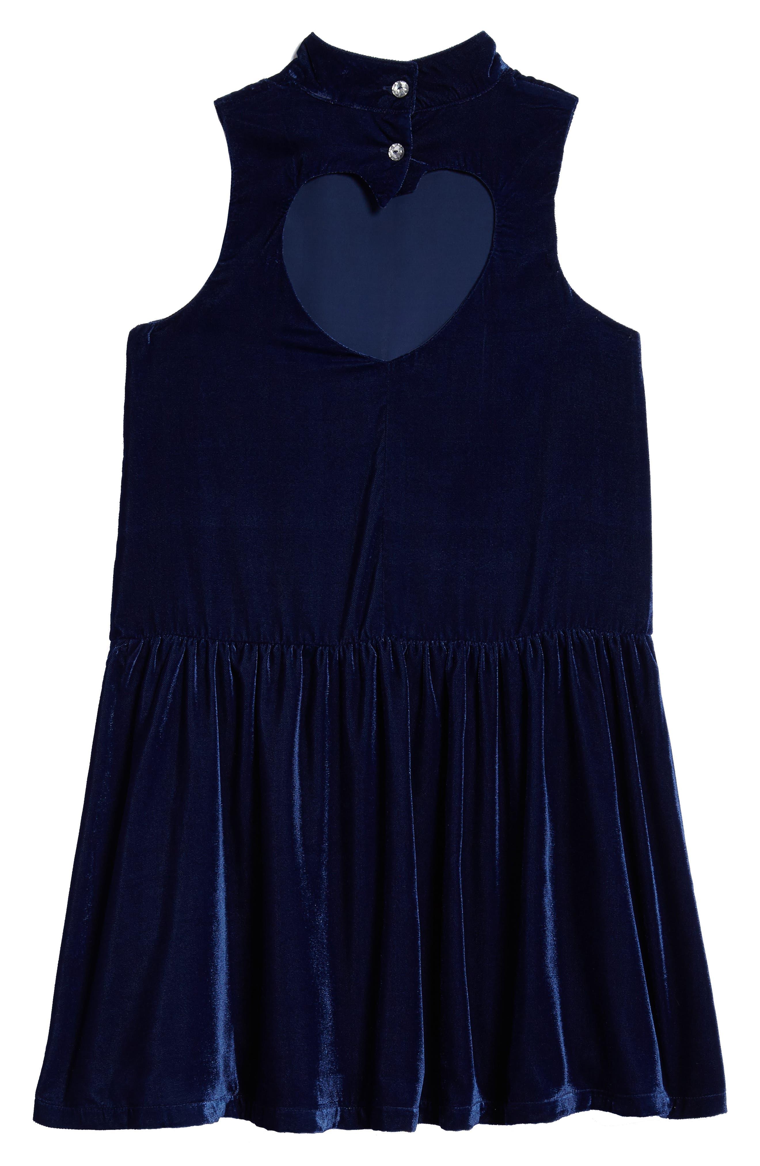 Velvet Drop Waist Dress,                             Alternate thumbnail 2, color,                             Navy Medieval