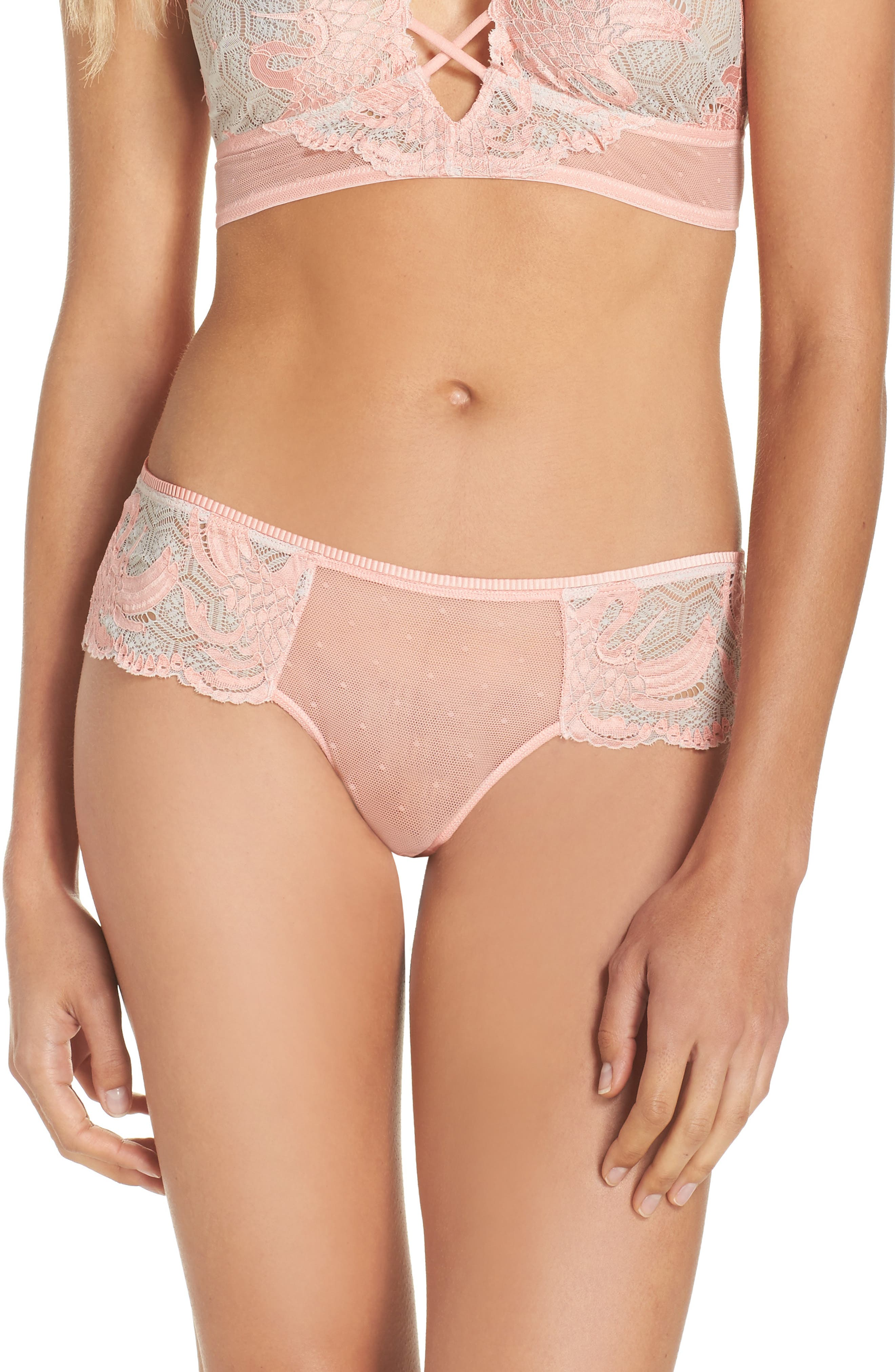 Honeydew Intimates Lace & Mesh Hipster Briefs