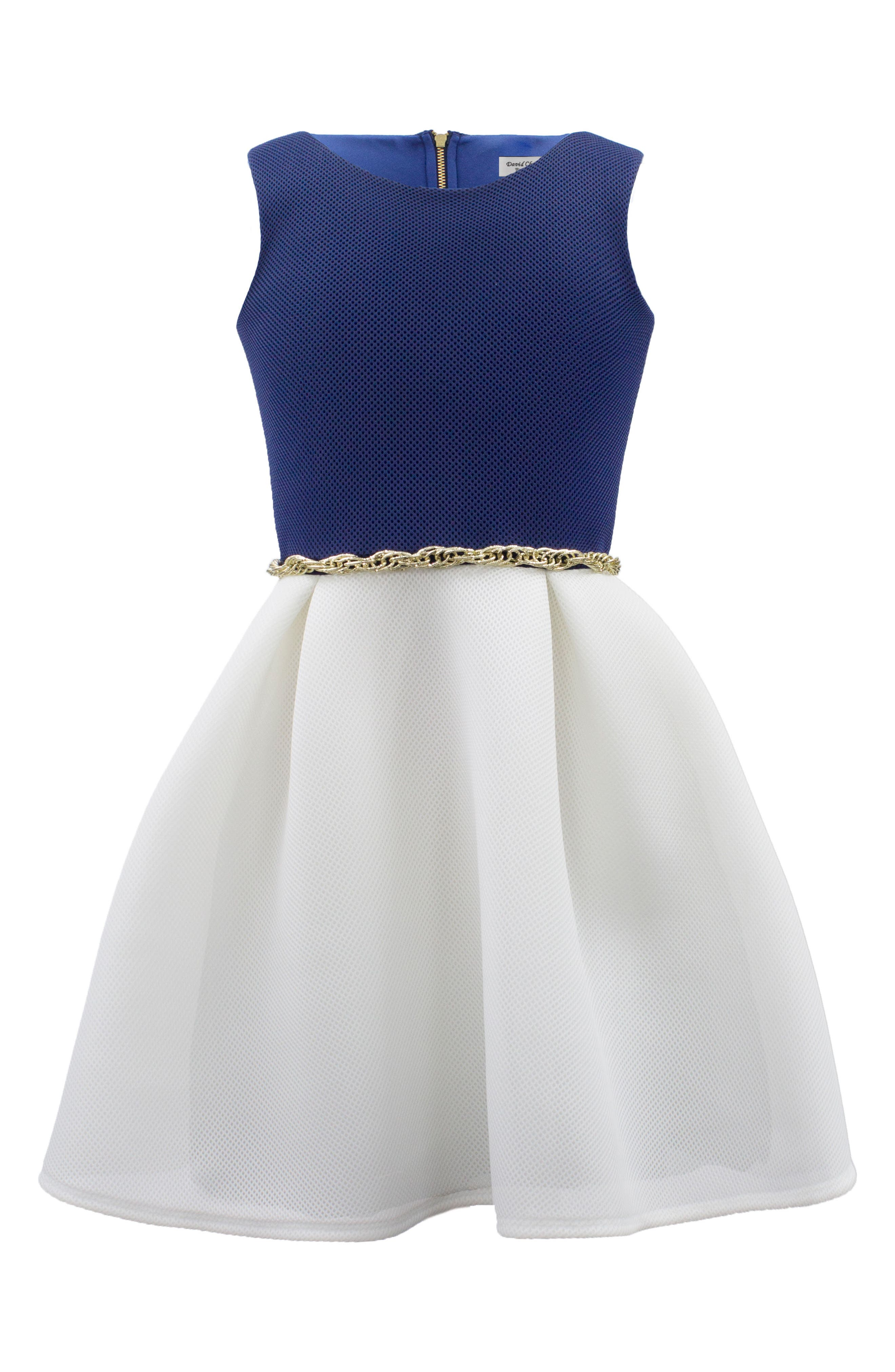 Colorblock Mesh Dress,                         Main,                         color, Navy/ Ivory