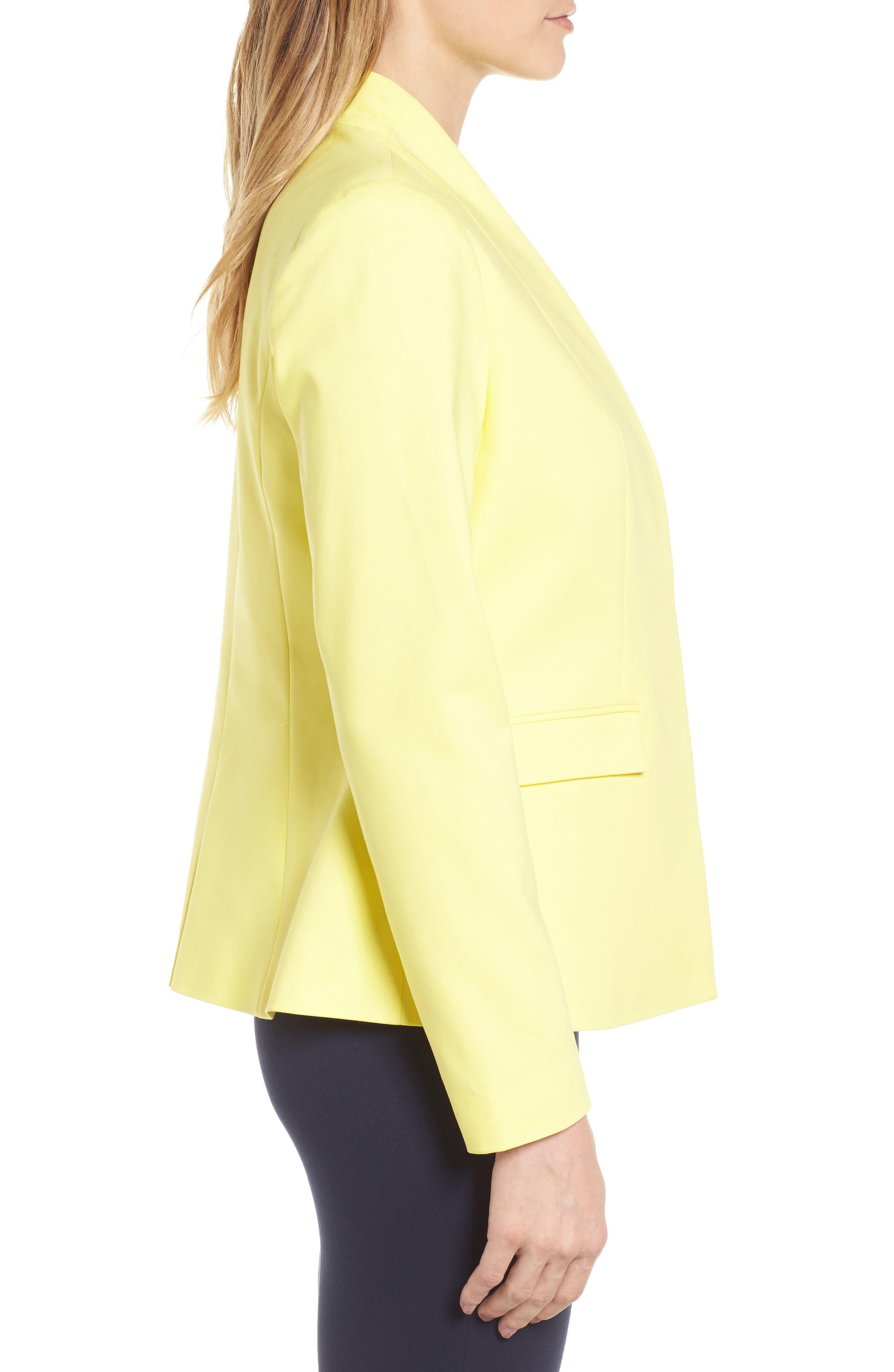 Alternate Image 3  - Chaus Stand Collar Jacket