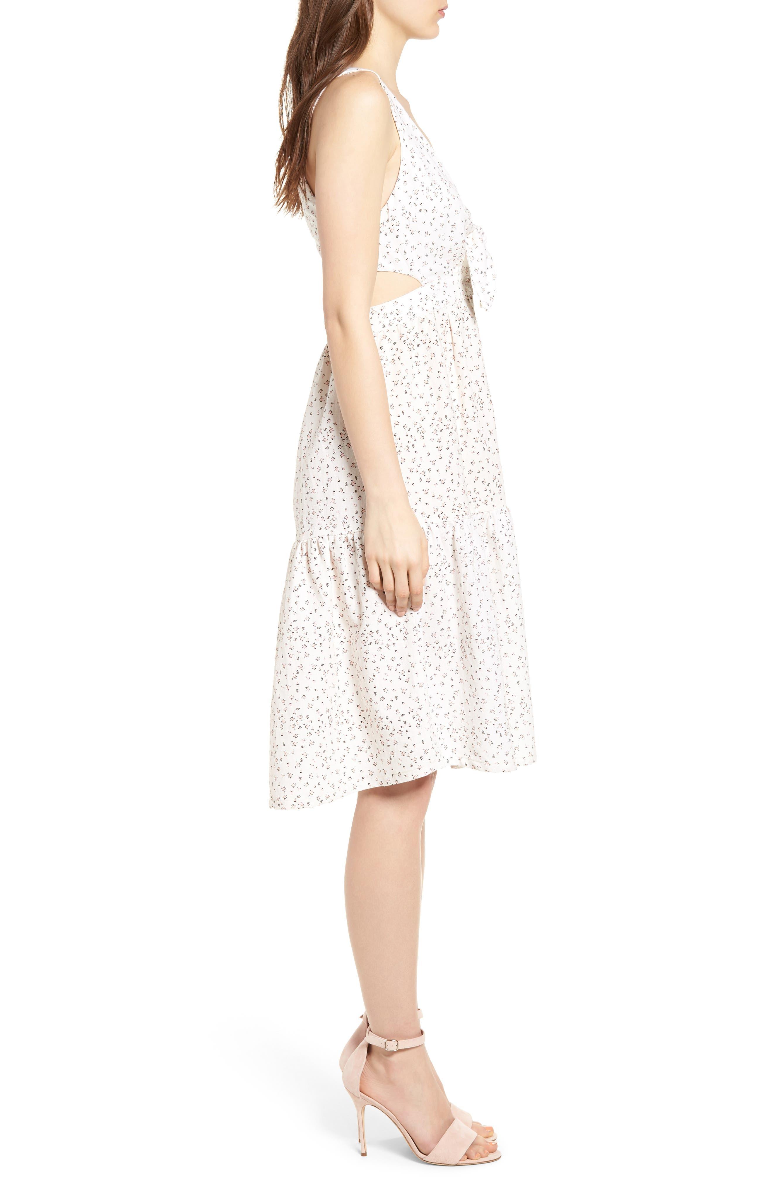 Alternate Image 3  - McGuire Palizzi Cutout Tie Front Dress