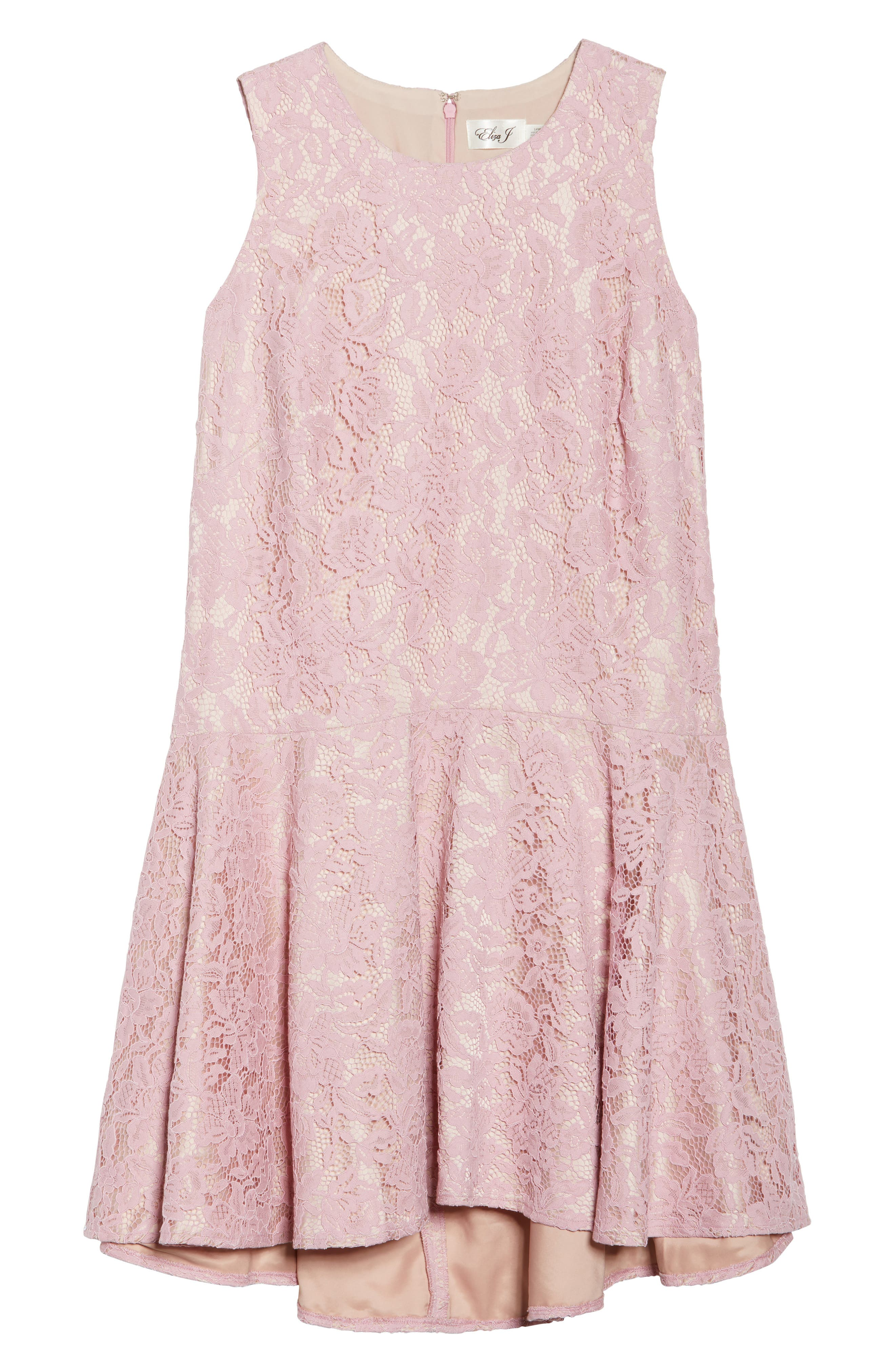 Lace Sleeveless Drop Waist Dress,                             Alternate thumbnail 6, color,                             Blush