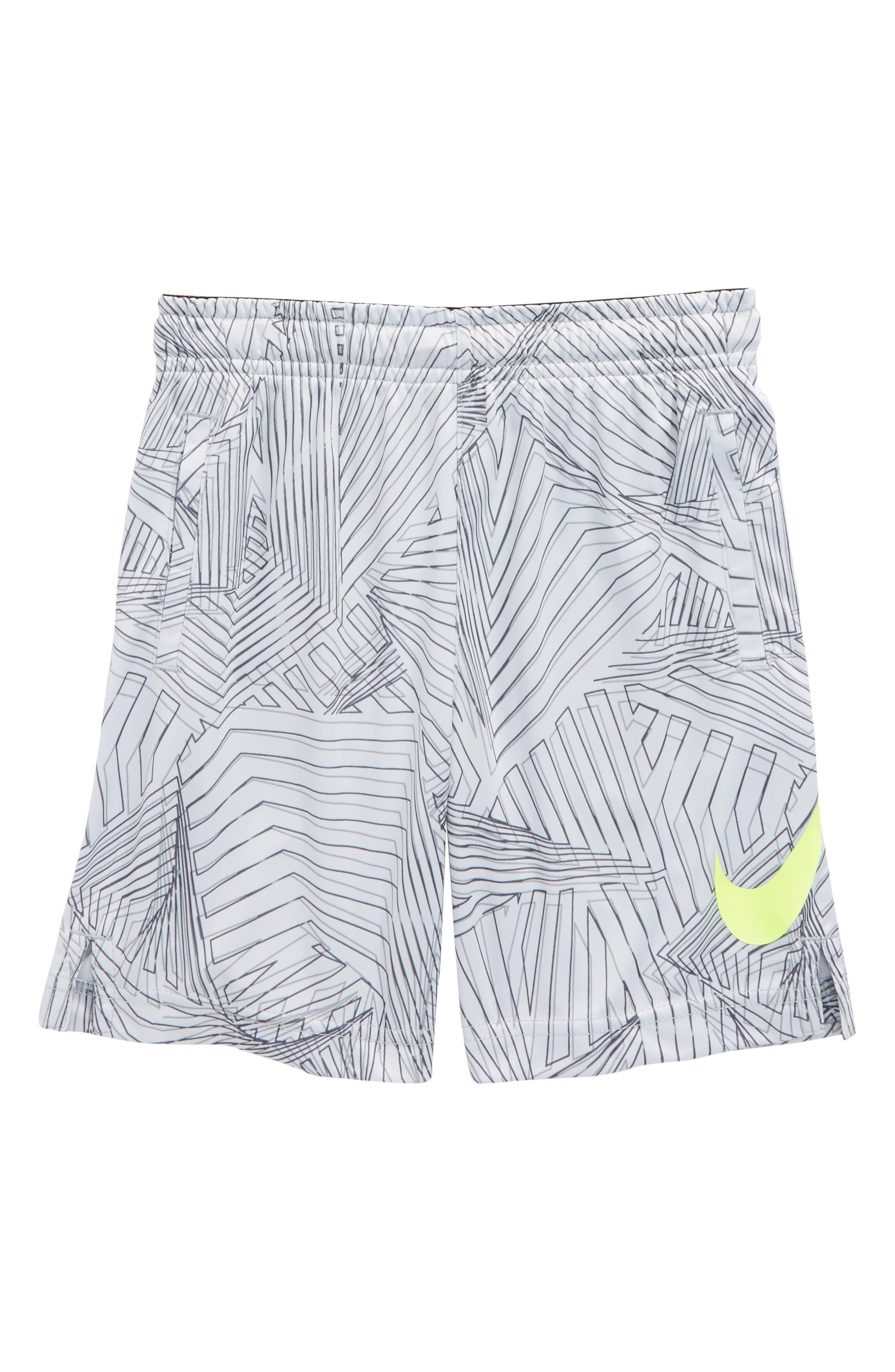 Alternate Image 1 Selected - Nike AOP Dry Shorts (Toddler Boys & Little Boys)
