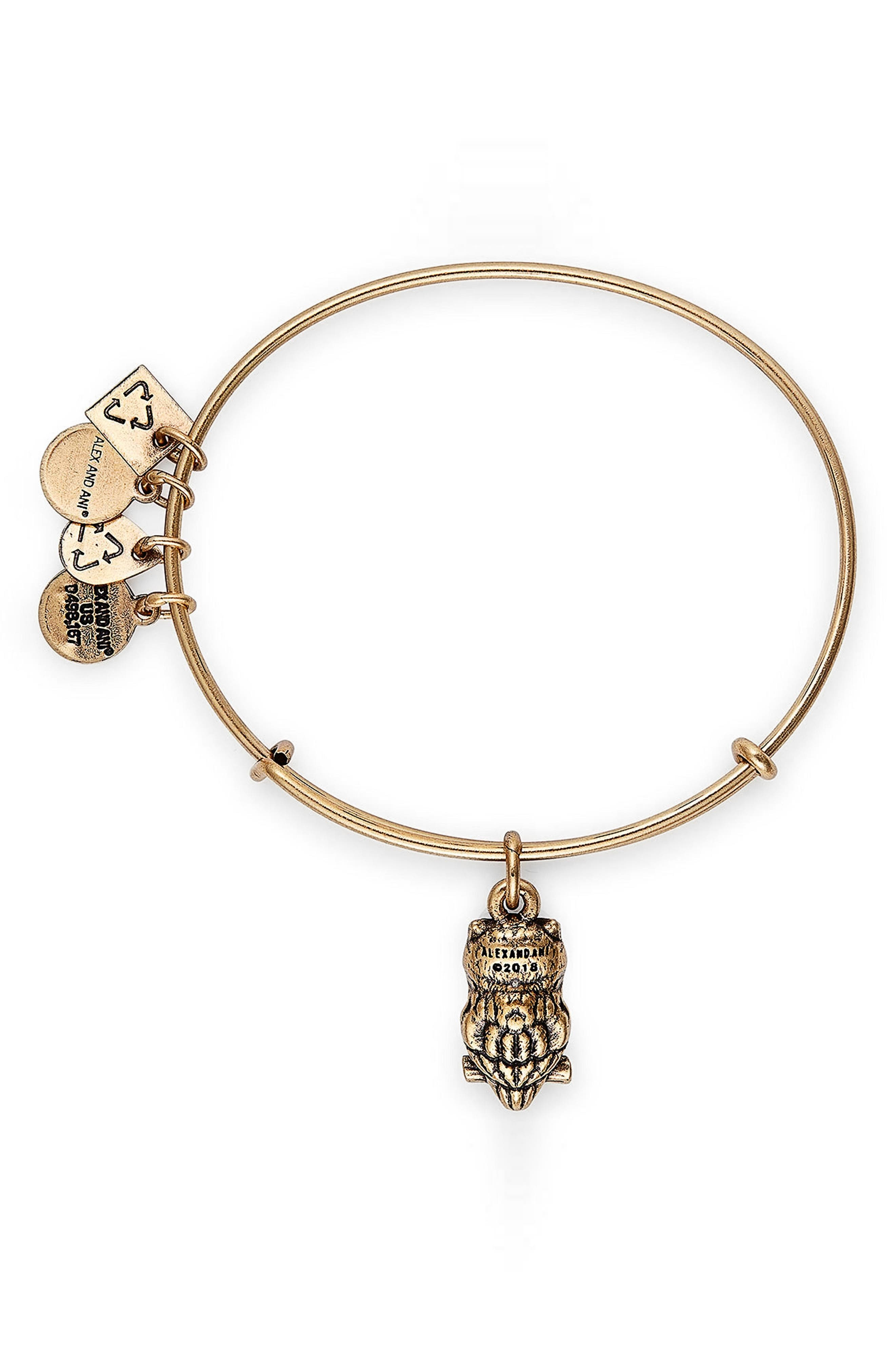 Alternate Image 2  - Alex and Ani Charity by Design Owl Charm Bracelet