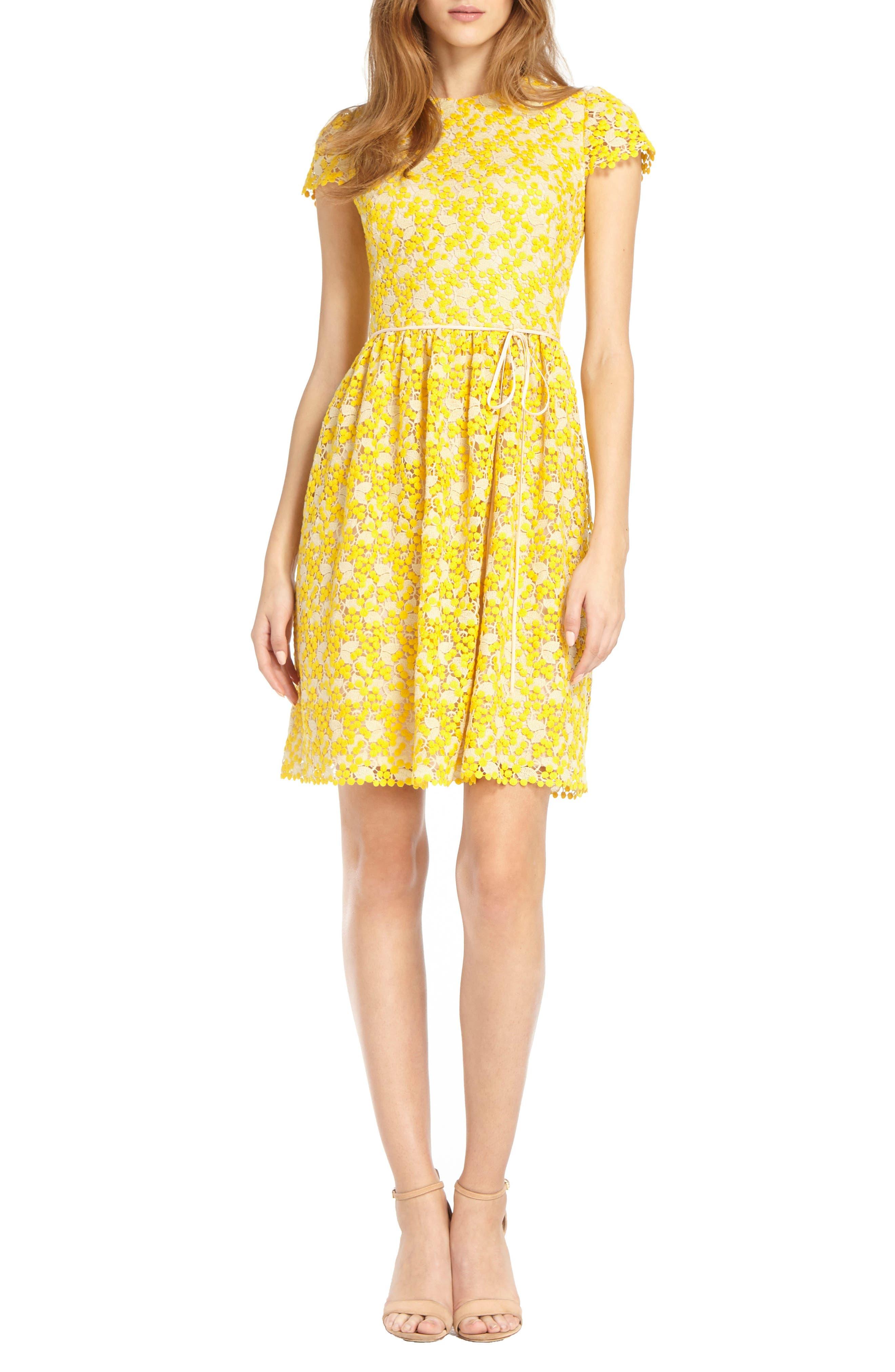 ML Monique Lhuillier Two-Tone Lace Dress