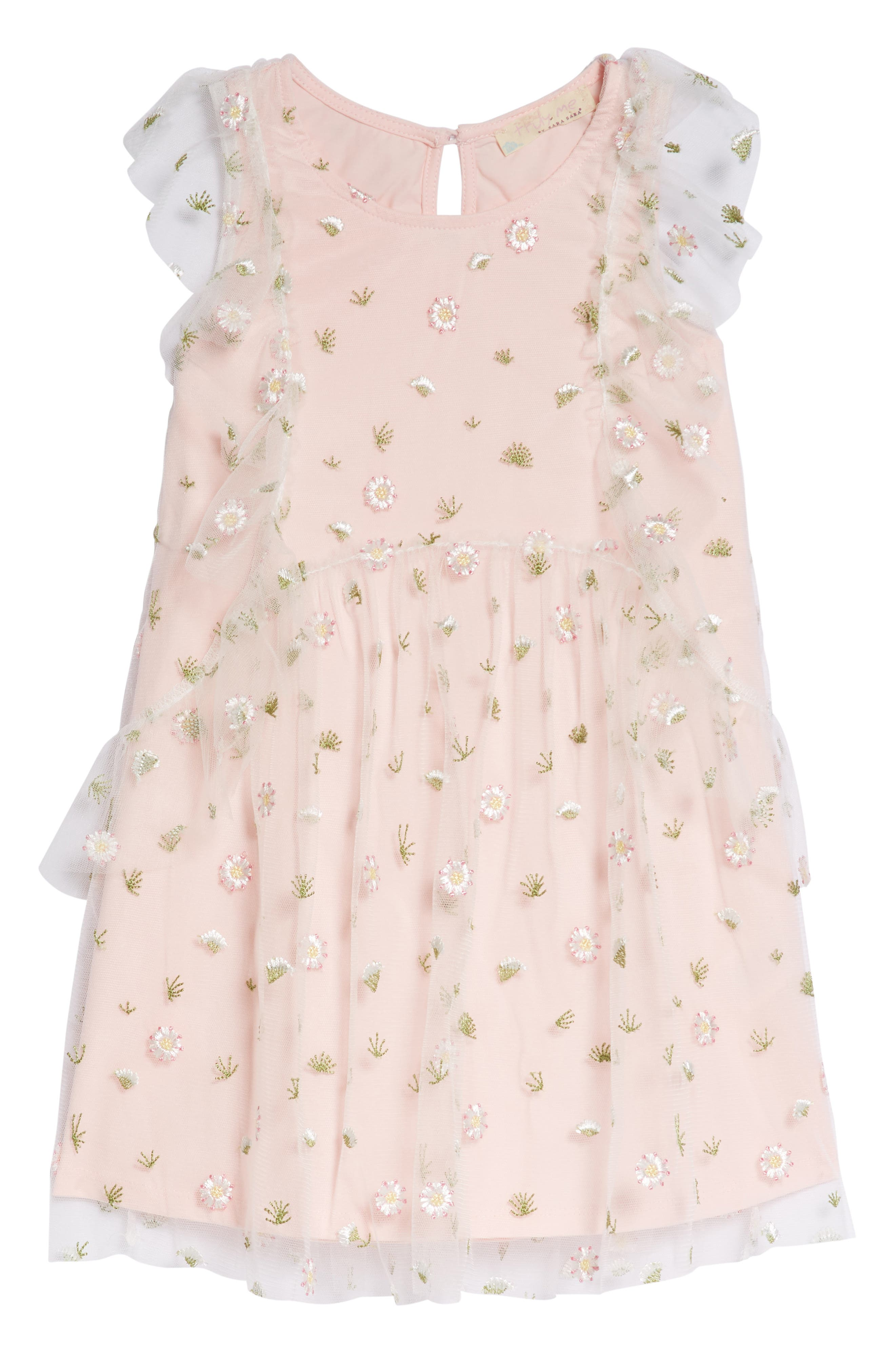 Embroidered Mesh Dress,                         Main,                         color, Pink Multi