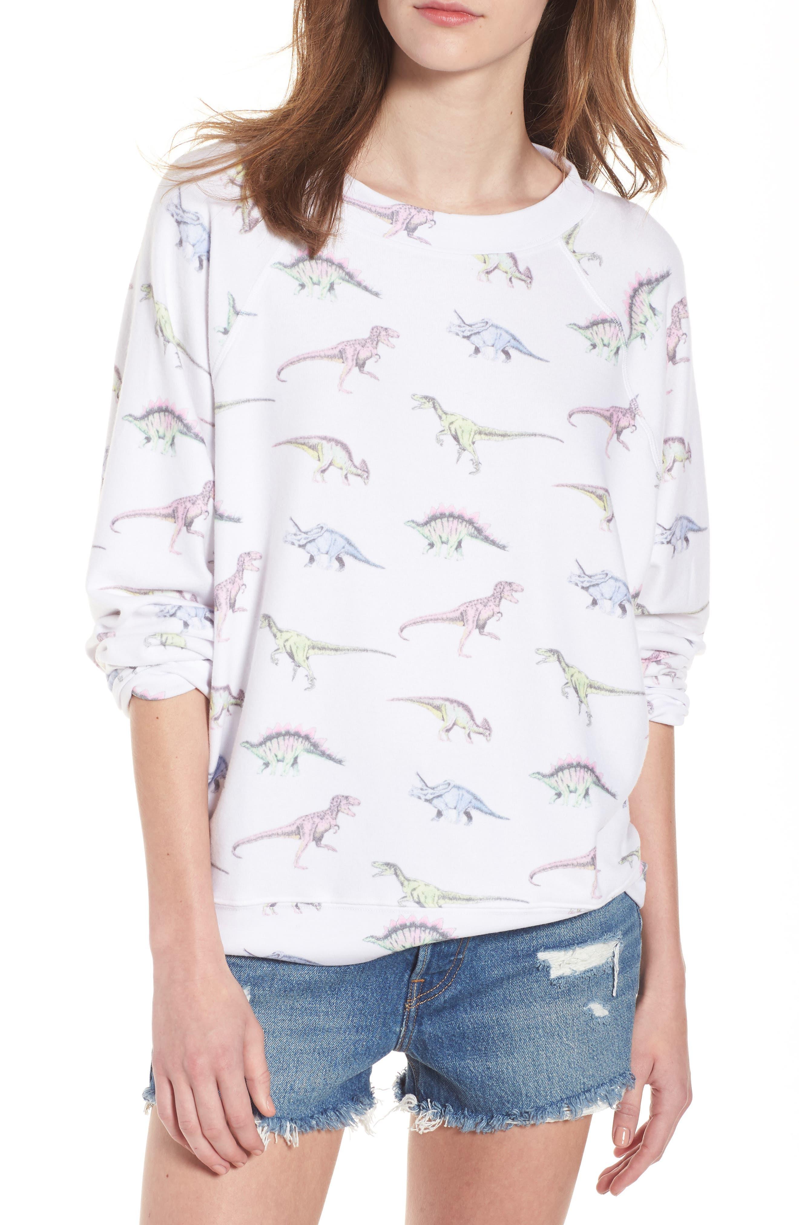 Wildfox Dinos - Sommers Sweatshirt