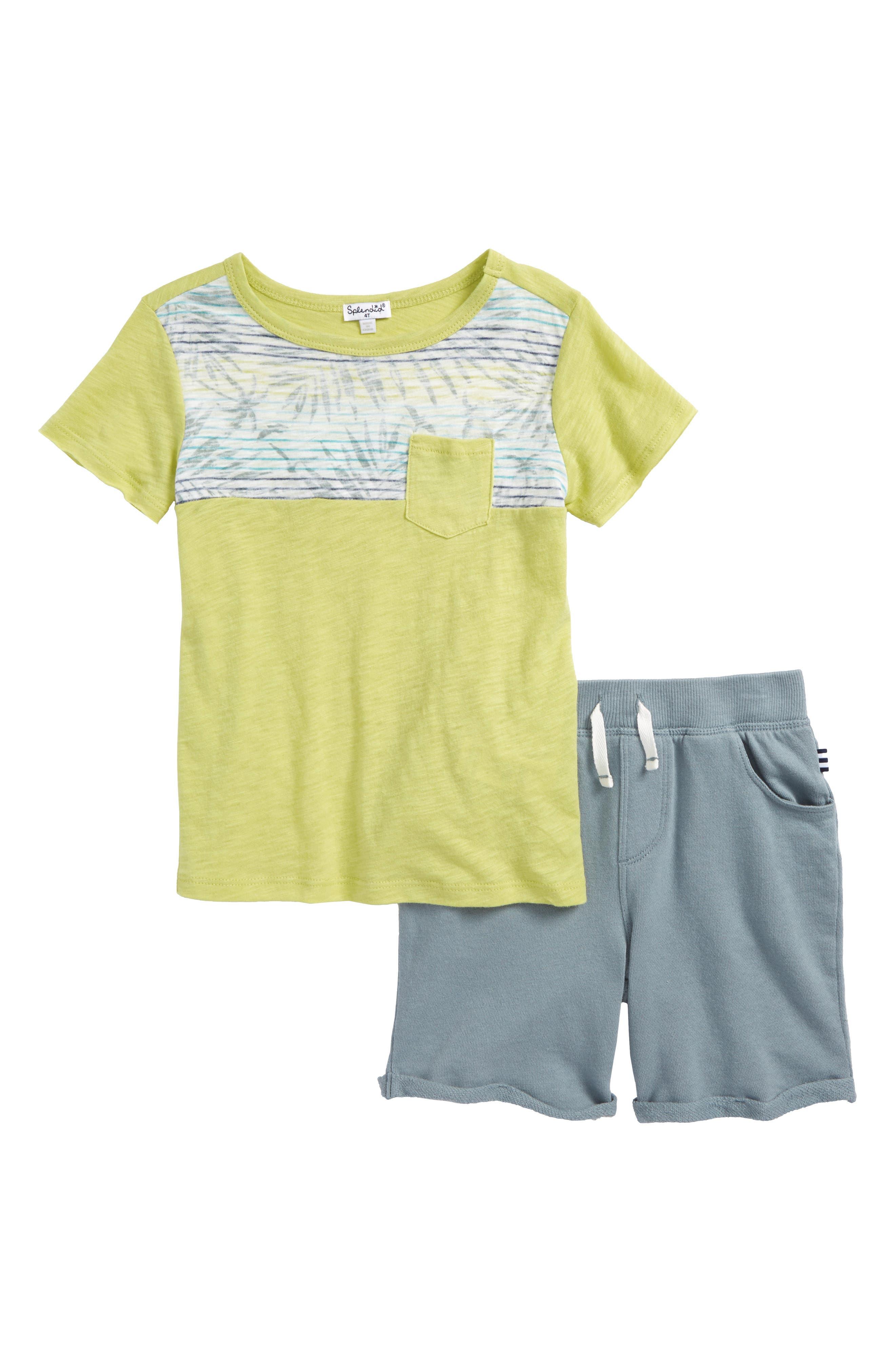 Splendid Reverse Print T-Shirt & Shorts Set (Toddler Boys & Little Boys)