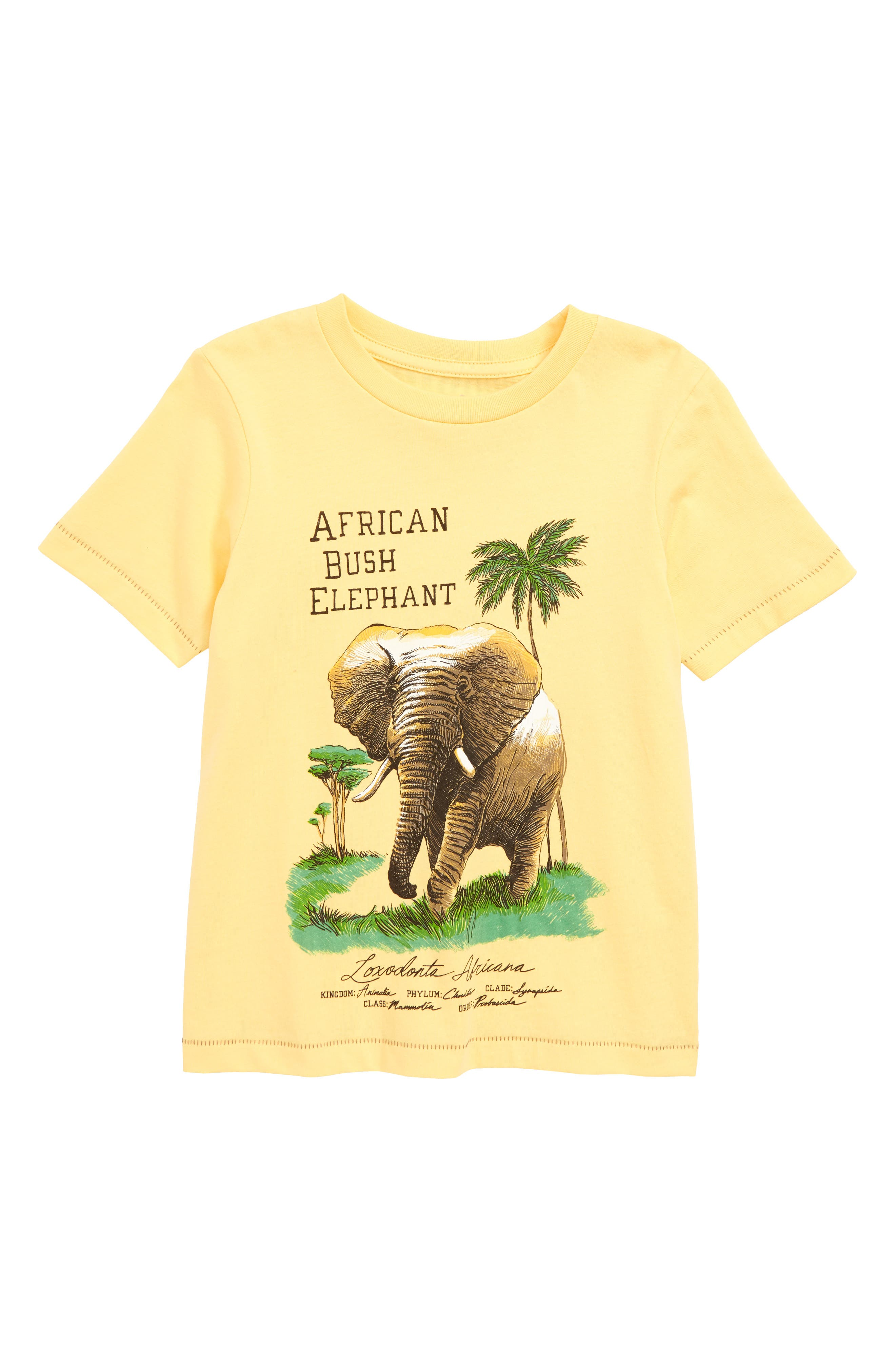 Elephant Graphic T-Shirt,                             Main thumbnail 1, color,                             Yellow