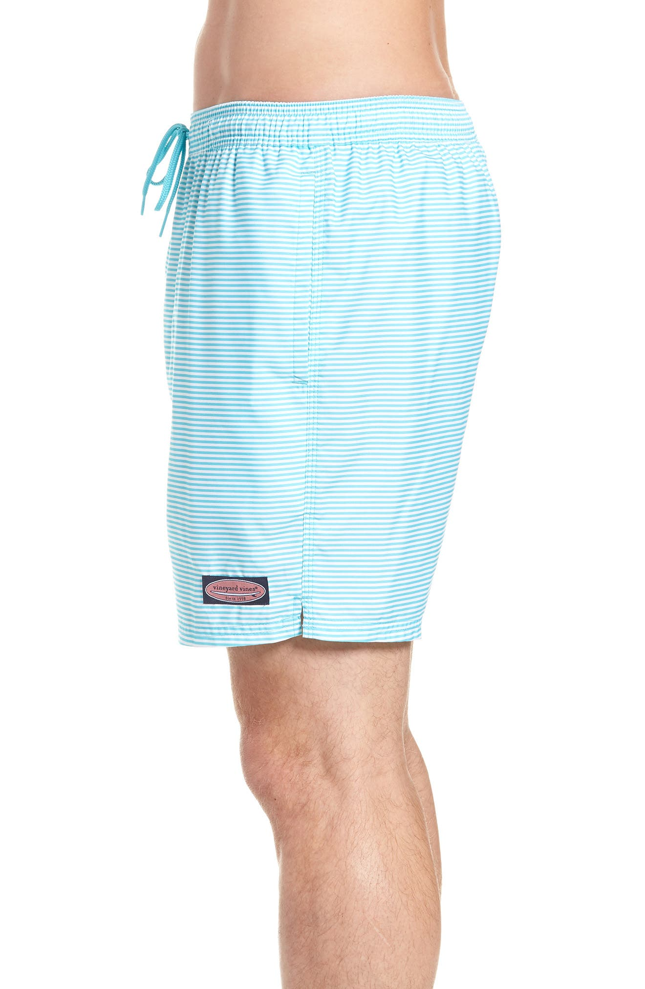 Chappy Stripe Swim Trunks,                             Alternate thumbnail 3, color,                             Turquoise