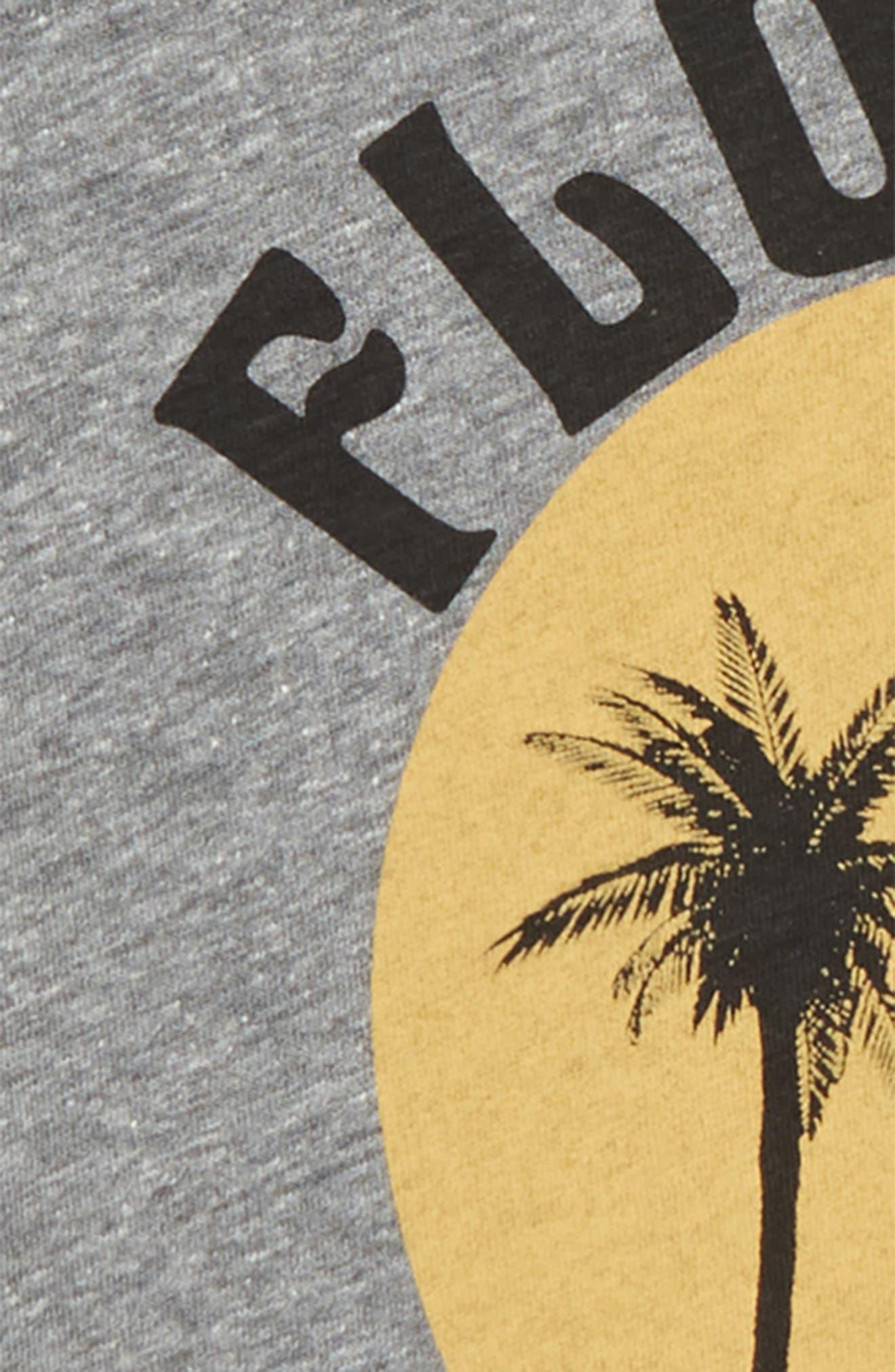 Florida Vibes Graphic T-Shirt,                             Alternate thumbnail 2, color,                             Tri Grey