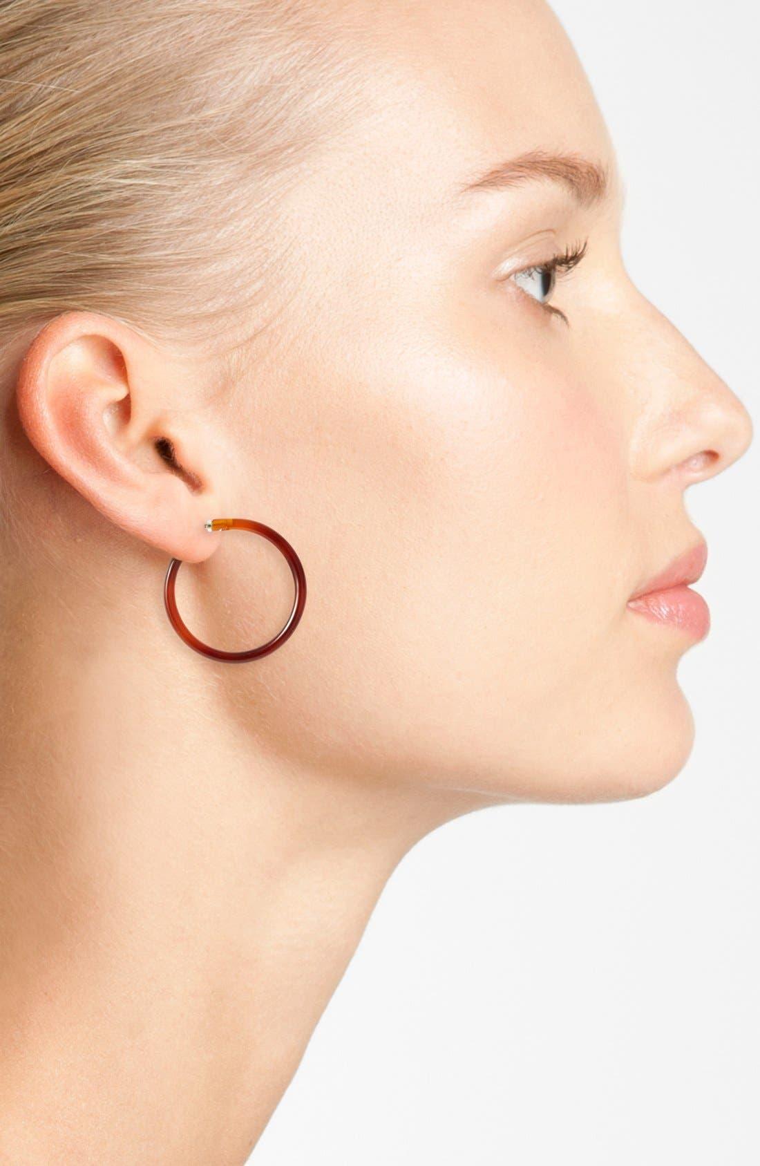 Alternate Image 2  - L. Erickson Hoop Earrings