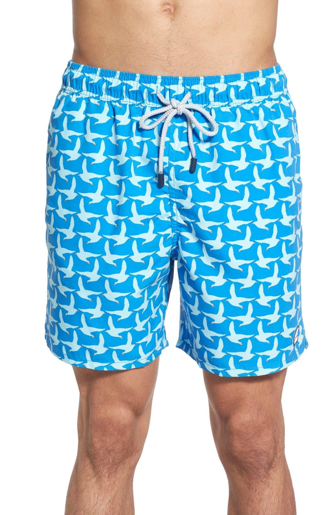 TOM & TEDDY Seagull Print Swim Trunks in Cobalt Blue