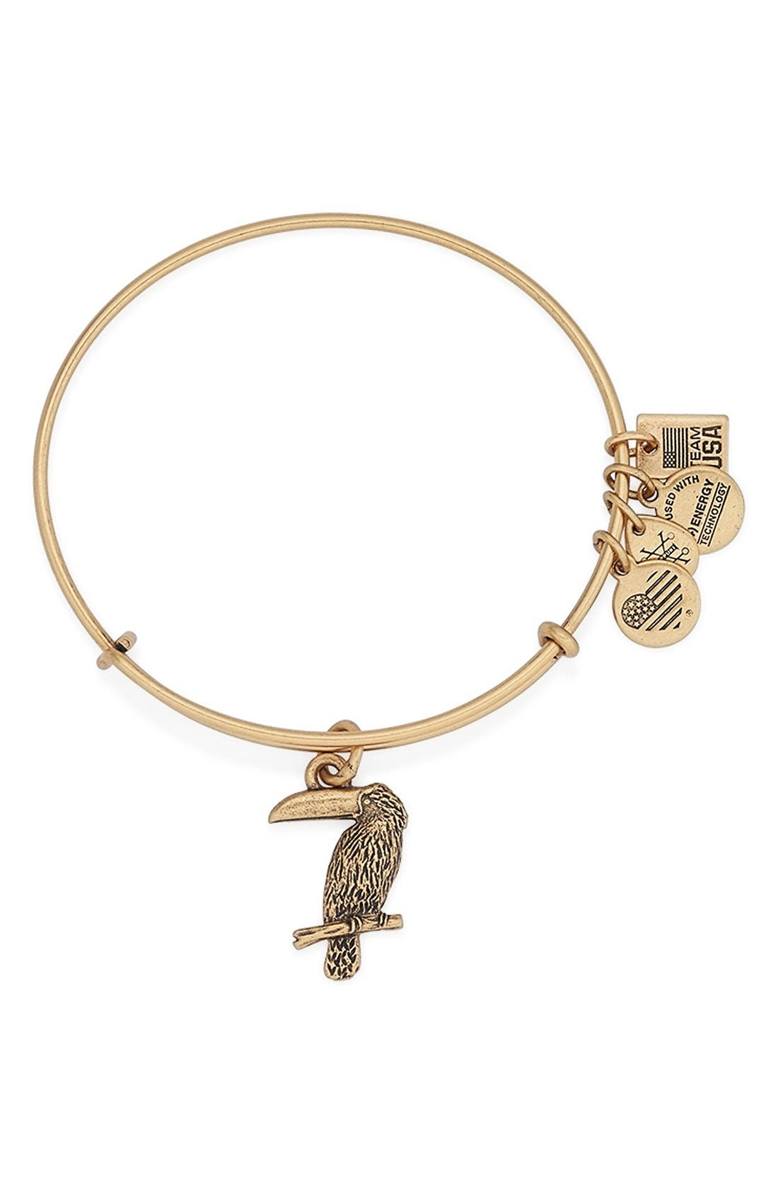 Main Image - Alex and Ani 'Team USA - Toucan' Expandable Wire Bangle
