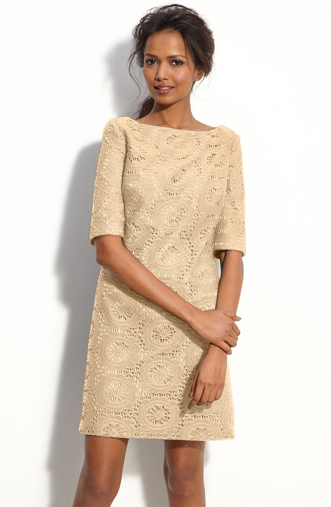 Alternate Image 1 Selected - Adrianna Papell Lace Shift Dress (Petite)