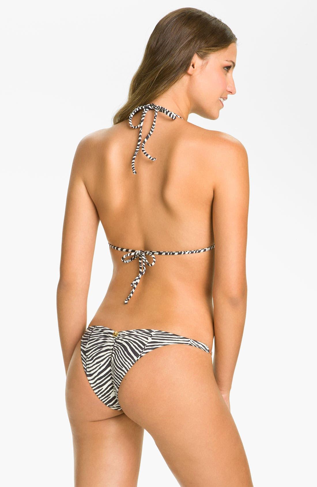 Alternate Image 5  - ViX Swimwear 'Africa' Bikini Bottoms