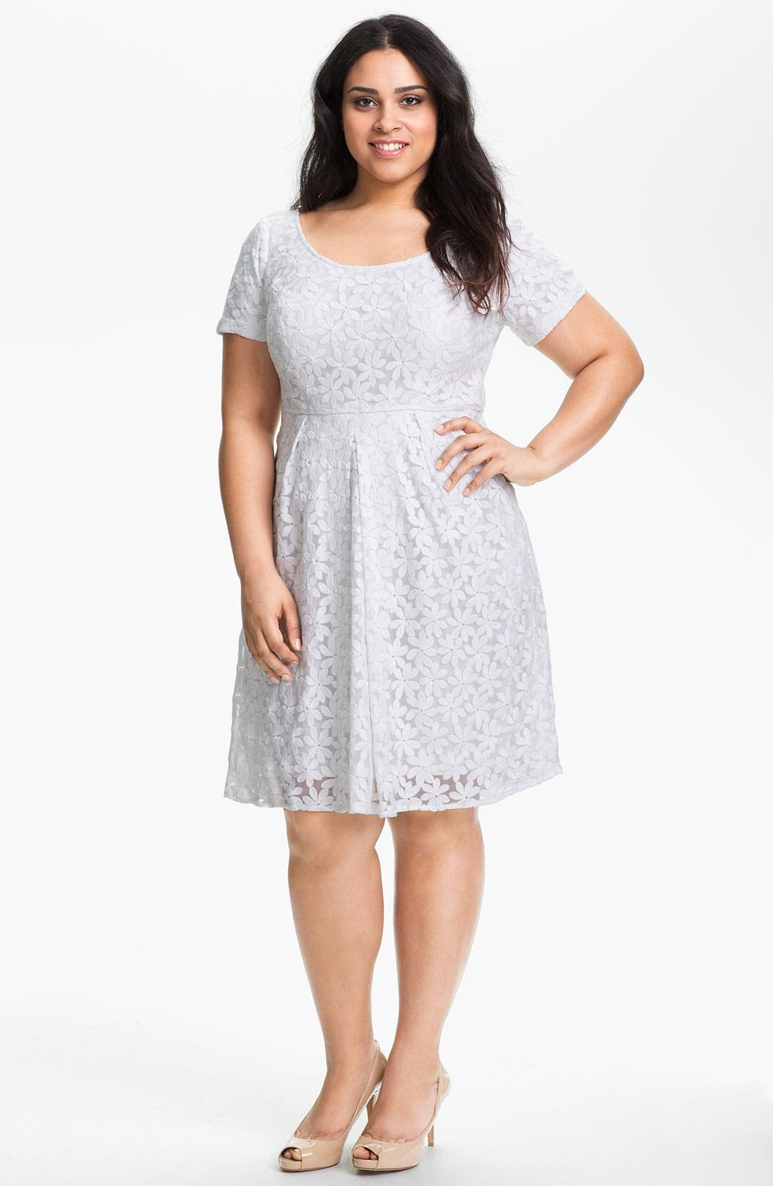 Alternate Image 1 Selected - Adrianna Papell Embroidered Tulle Dress (Plus Size) (Online Only)