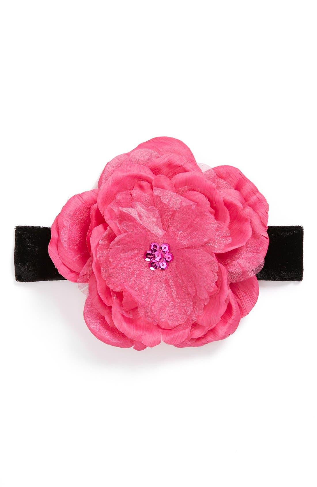 Alternate Image 1 Selected - PLH Bows & Laces Velvet Headband (Baby Girls & Toddler Girls)