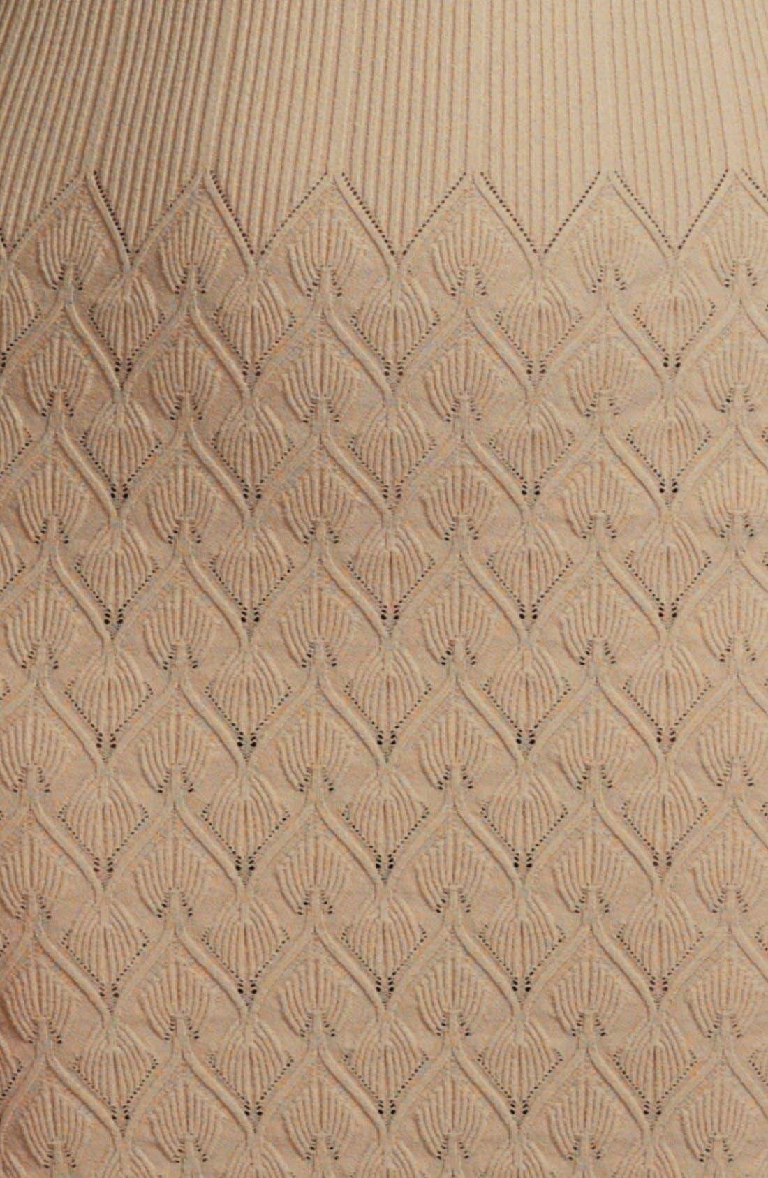 Alternate Image 3  - Alexander McQueen Diamond Knit Gown