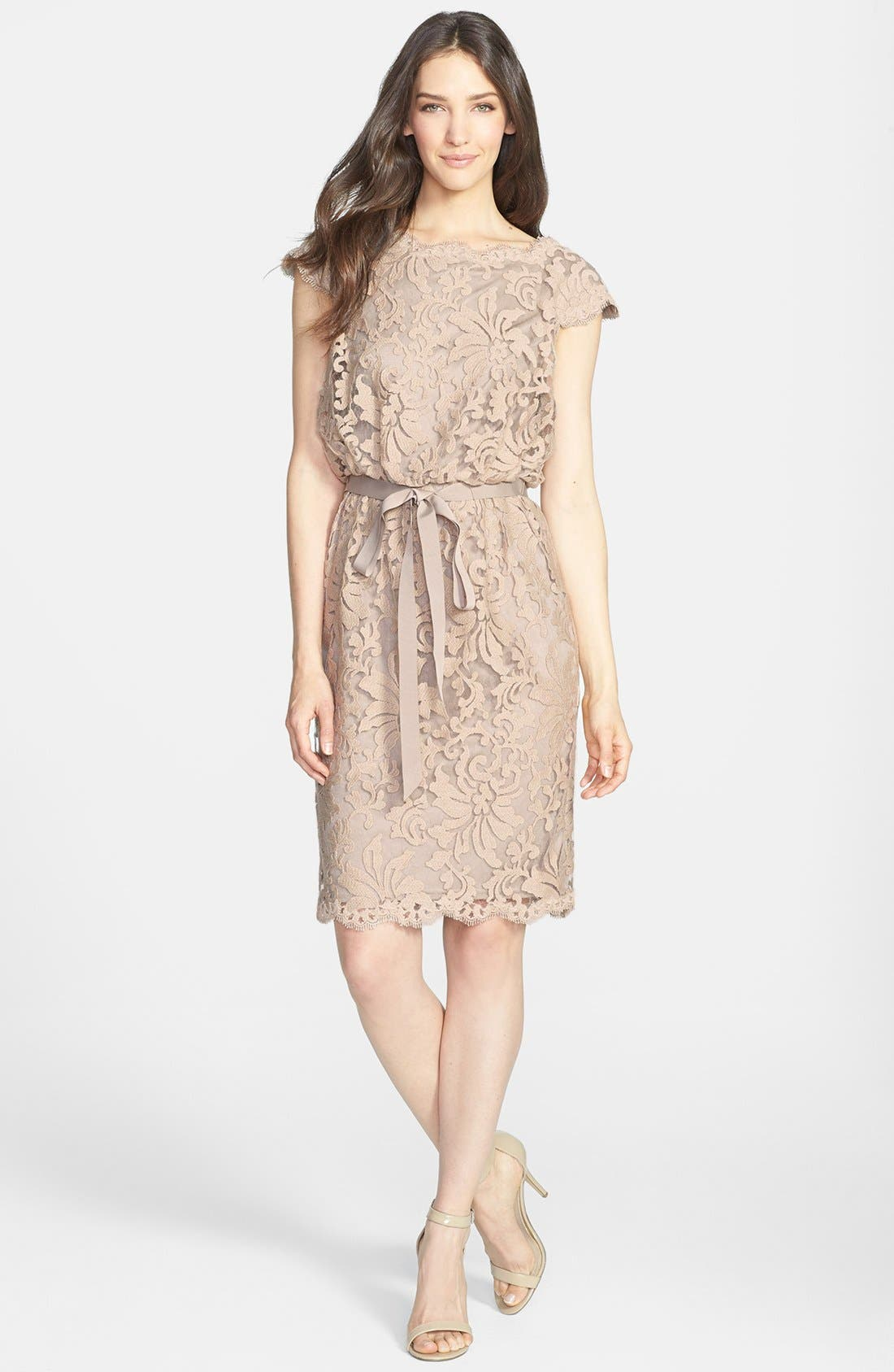 Alternate Image 2  - Tadashi Shoji Lace Blouson Dress