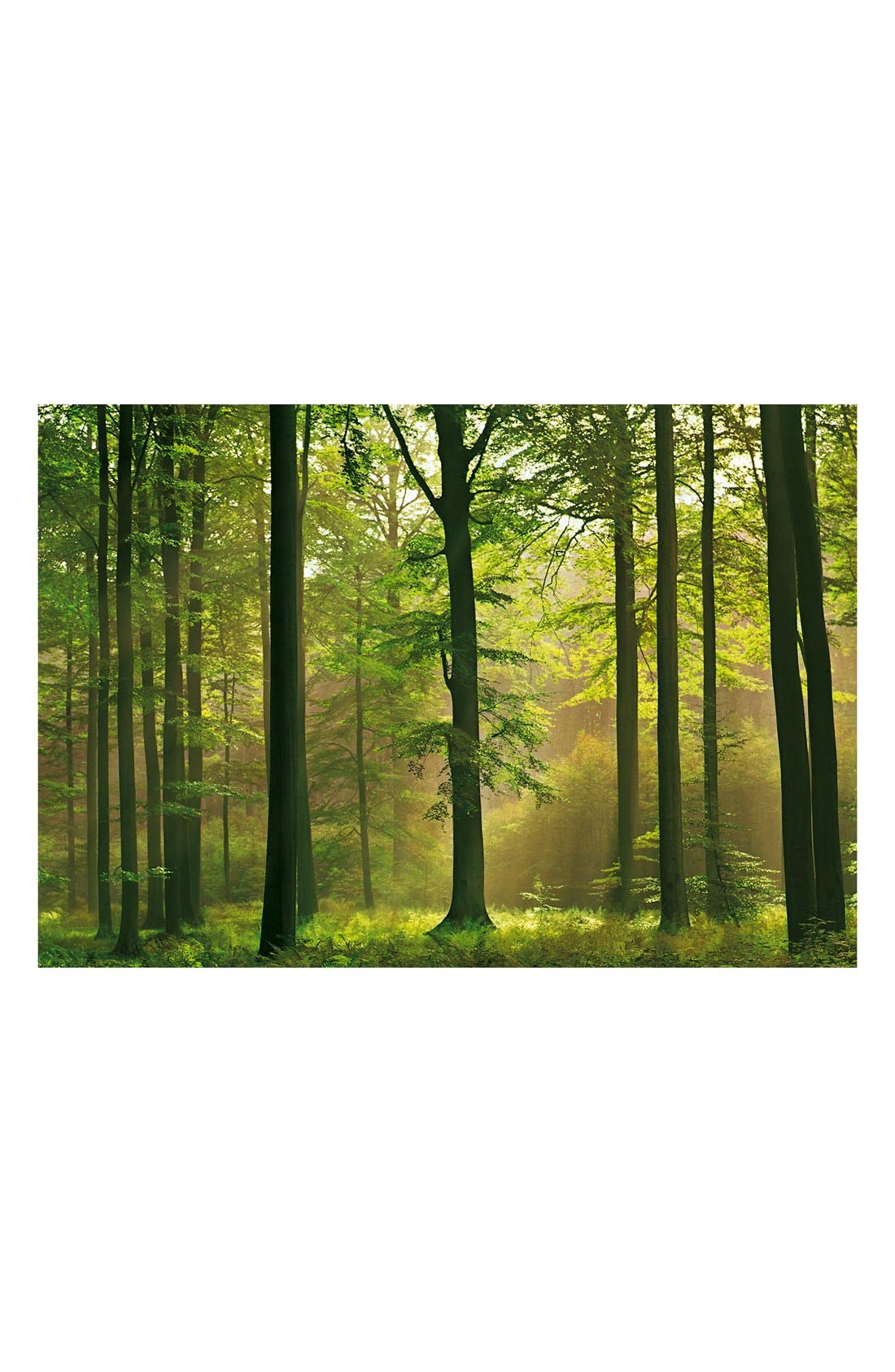 Main Image - Wallpops 'Autumn Forest' Wall Mural (8-Panel)