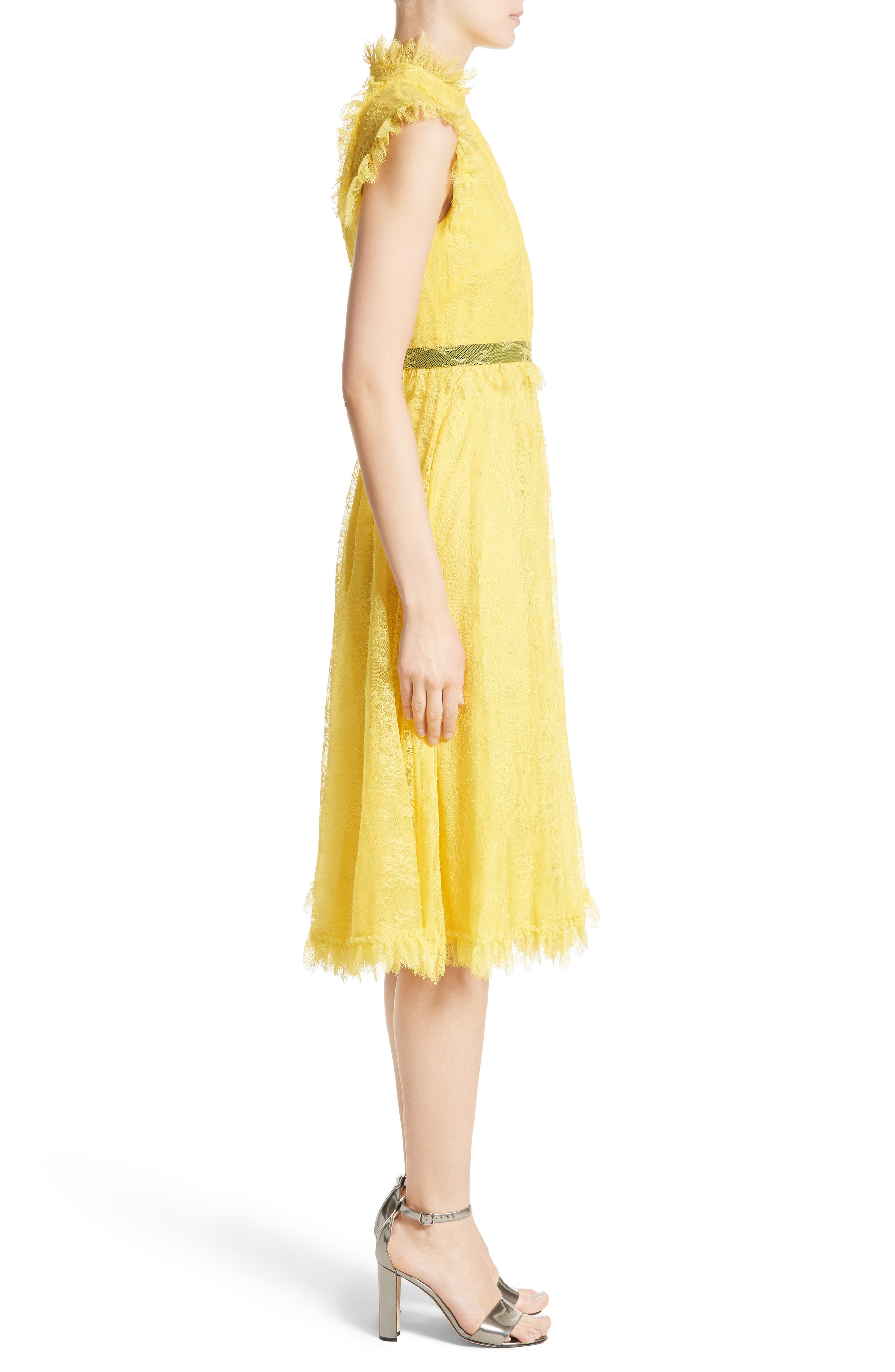 Alternate Image 5  - Erdem Tulle Lace Dress