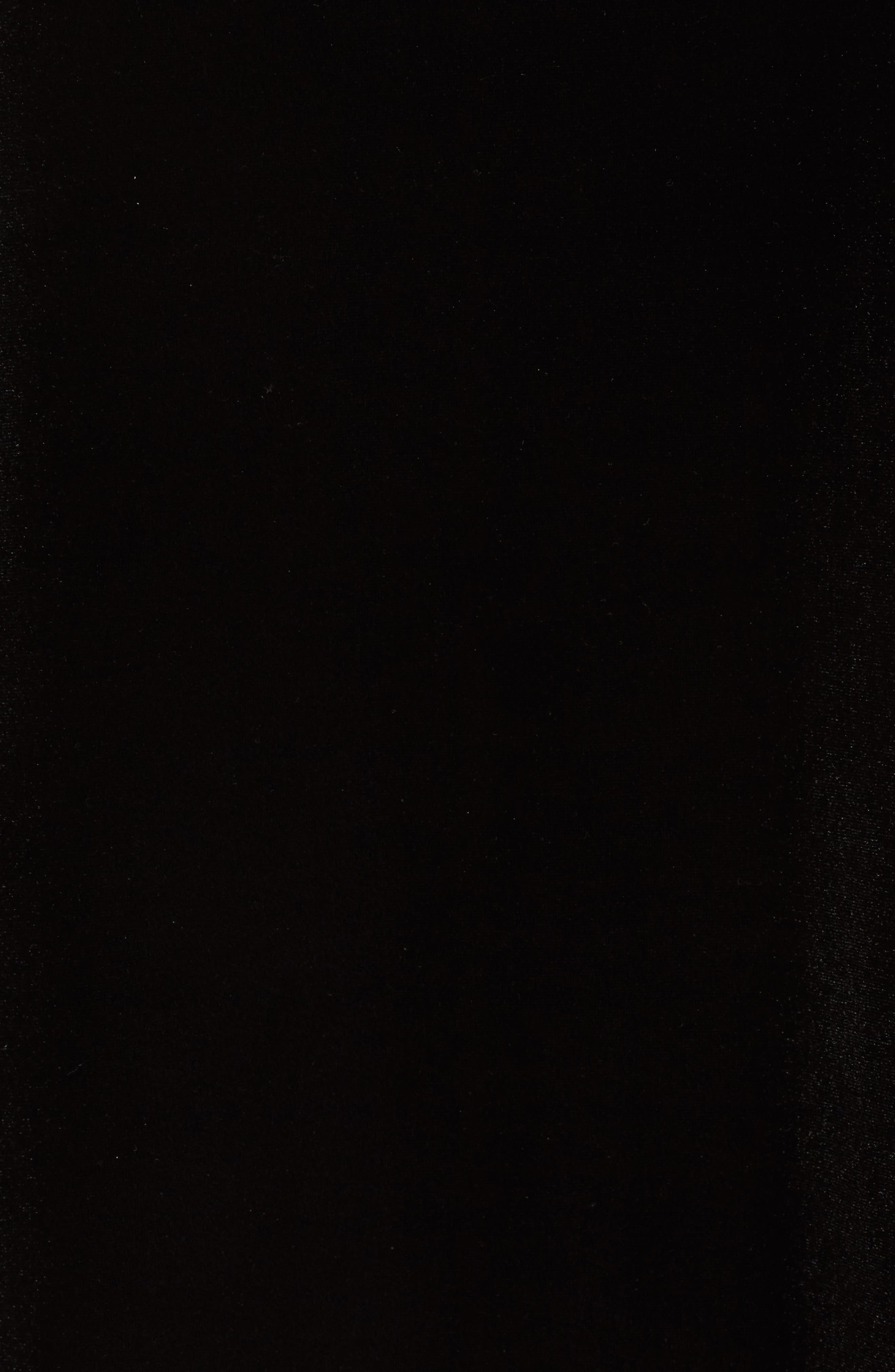 Alternate Image 5  - Talbot Runhof Sequin & Velvet High/Low Tunic