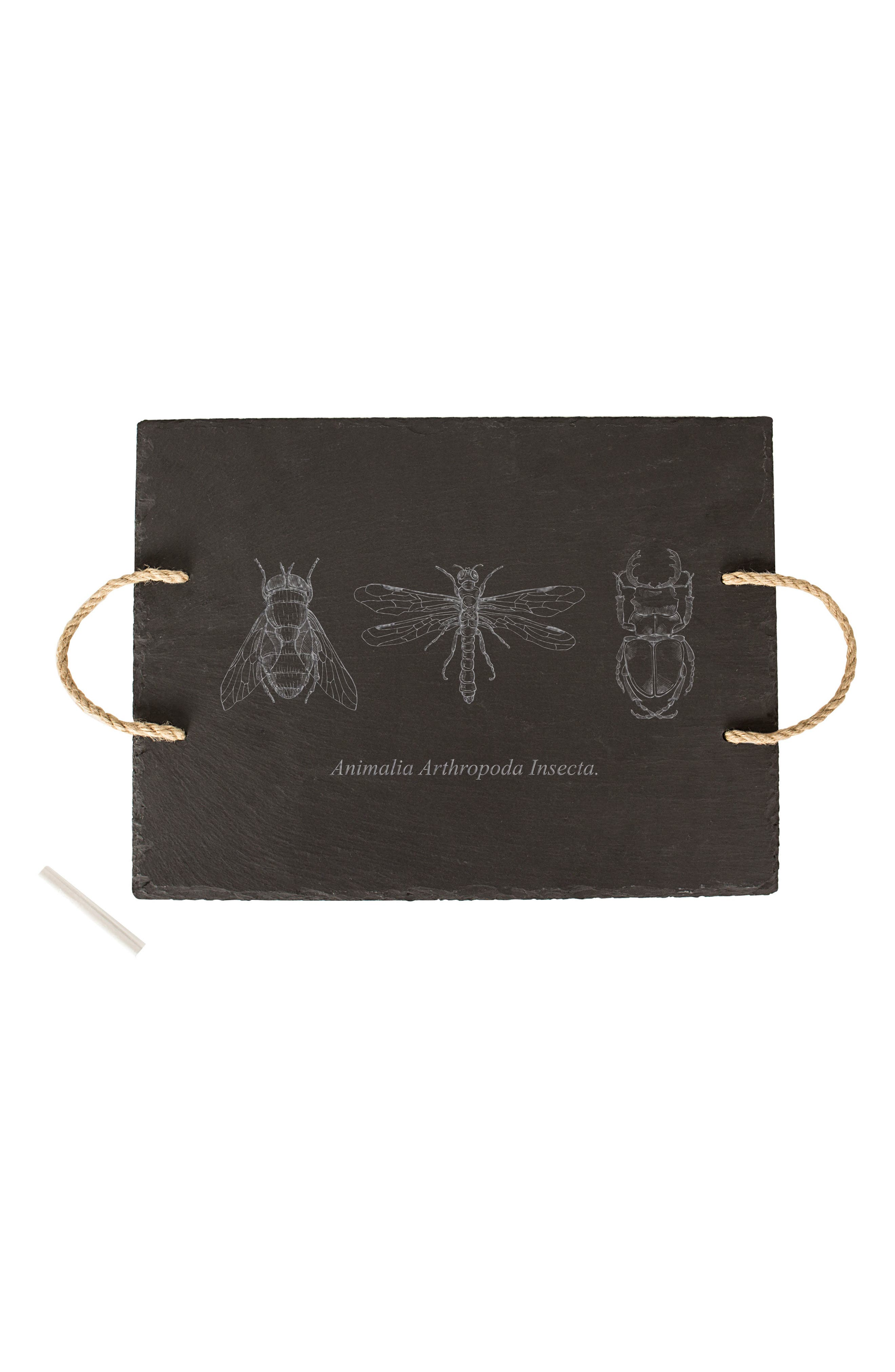 Insect Slate Tray,                             Main thumbnail 1, color,                             Black