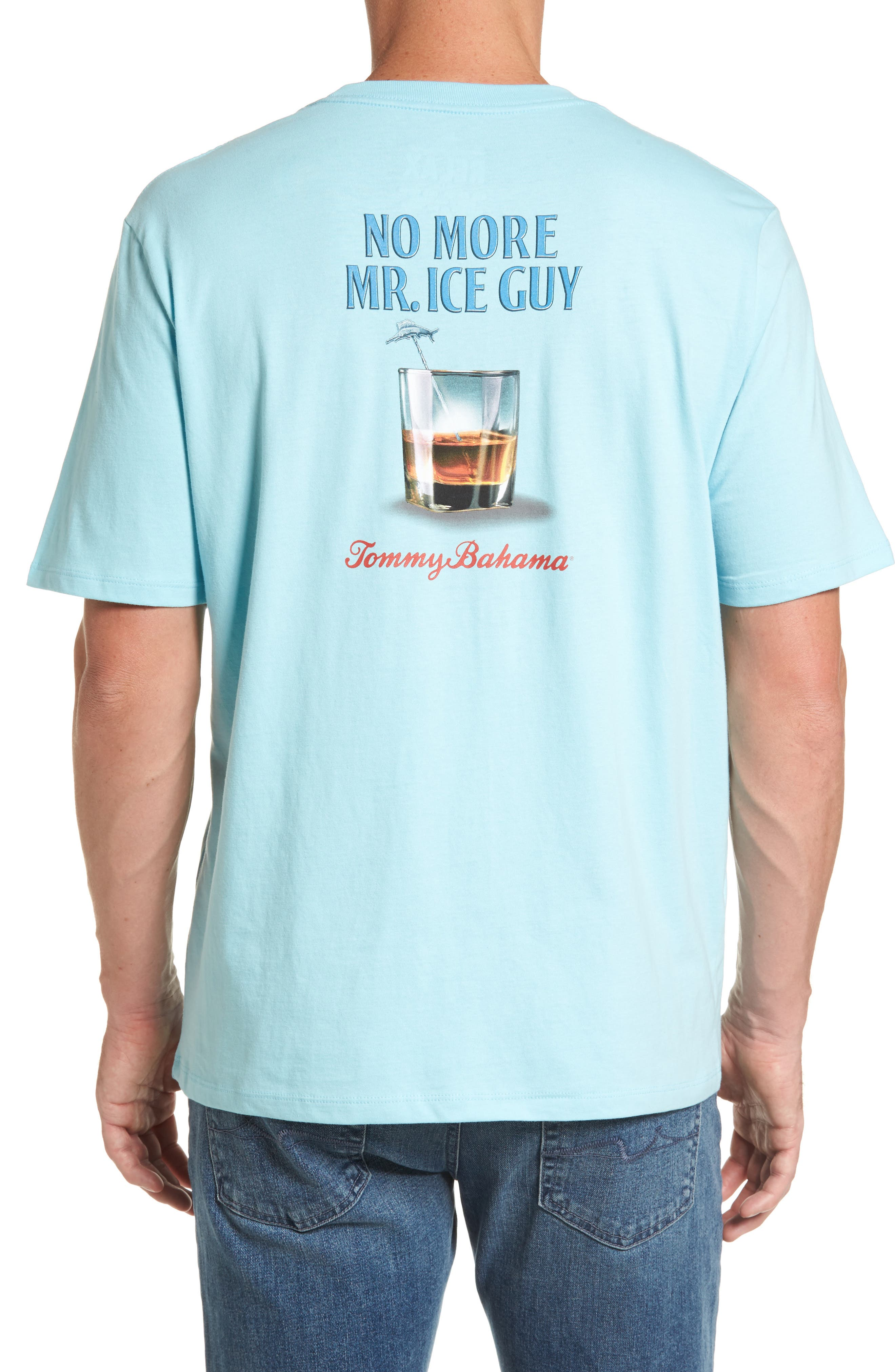 Mr. Ice Guy Graphic T-Shirt,                         Main,                         color, Graceful Sea