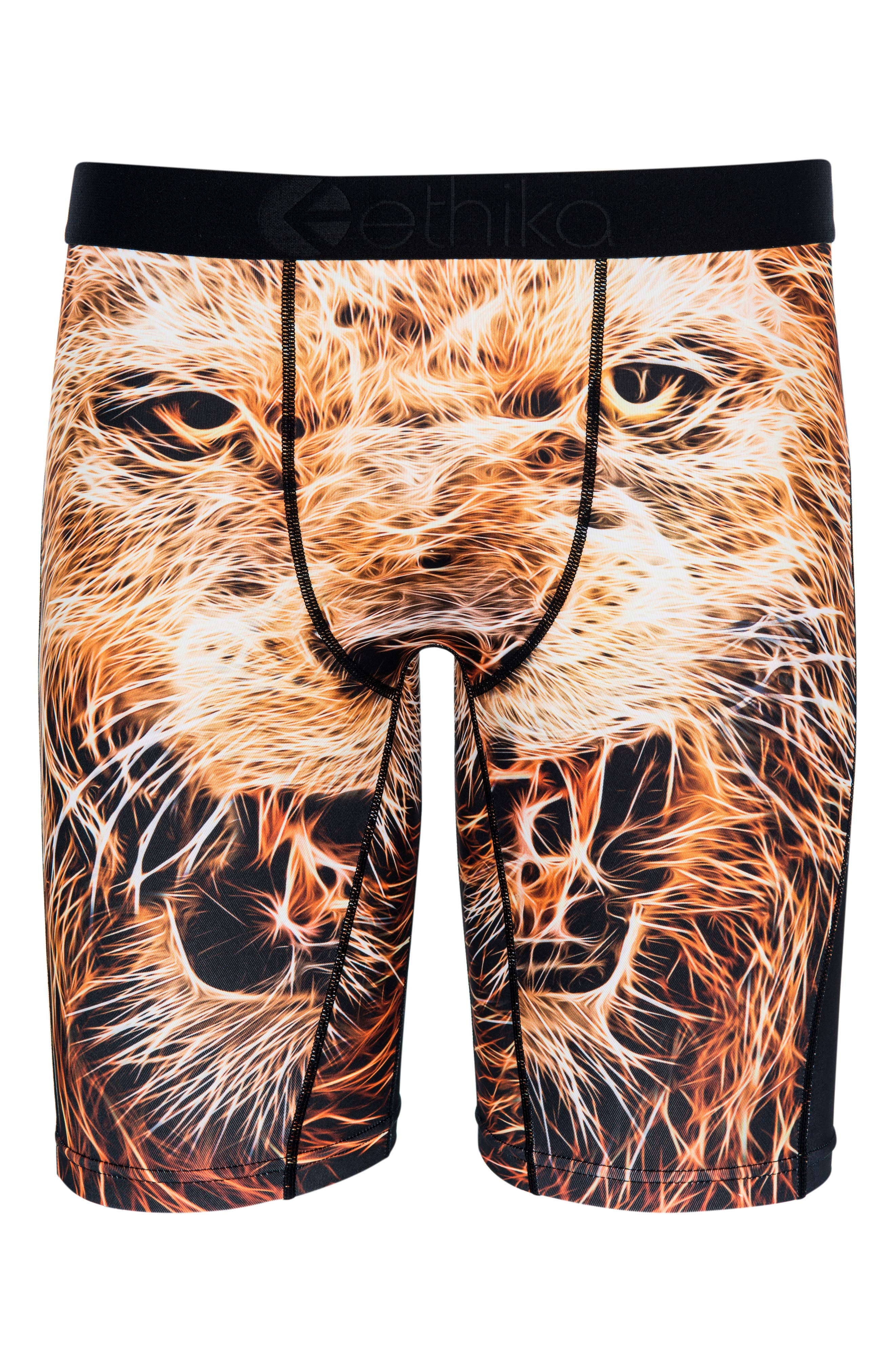Ethika Pride Boxer Briefs (Little Boys & Big Boys)