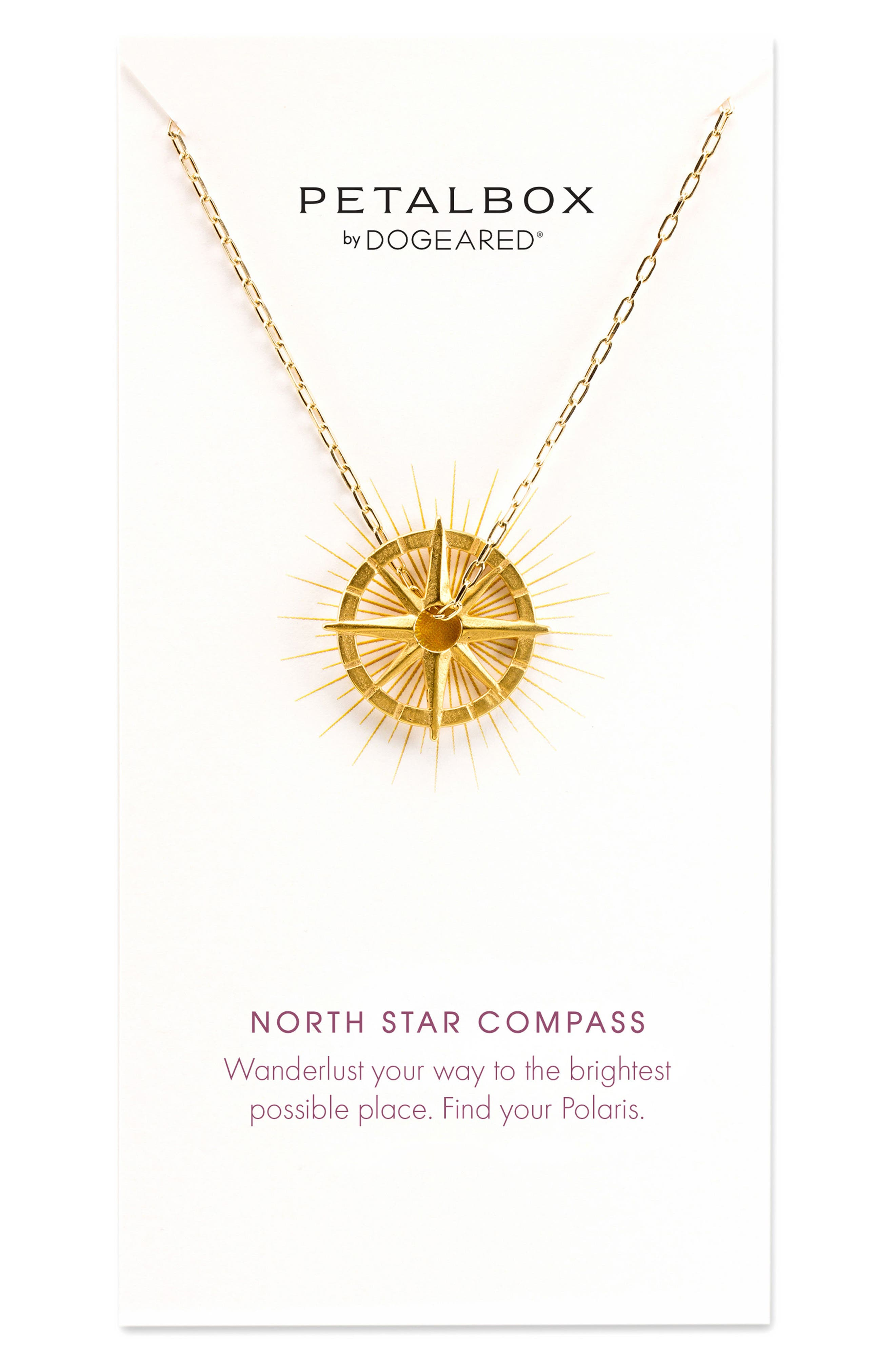 Petalbox North Star Compass Pendant Necklace,                         Main,                         color, Gold