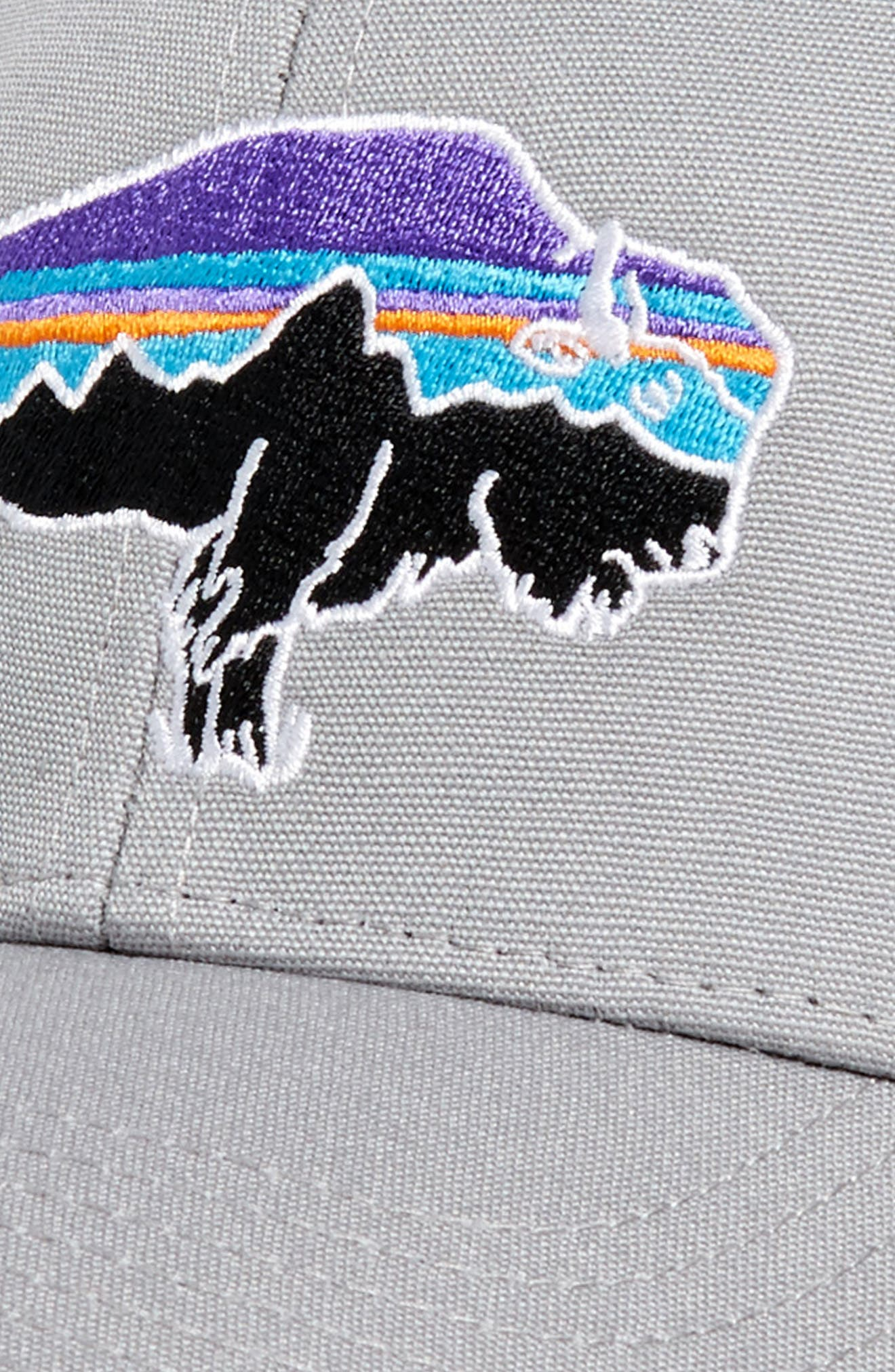 'Fitz Roy Bison' Trucker Hat,                             Alternate thumbnail 3, color,                             Drifter Grey