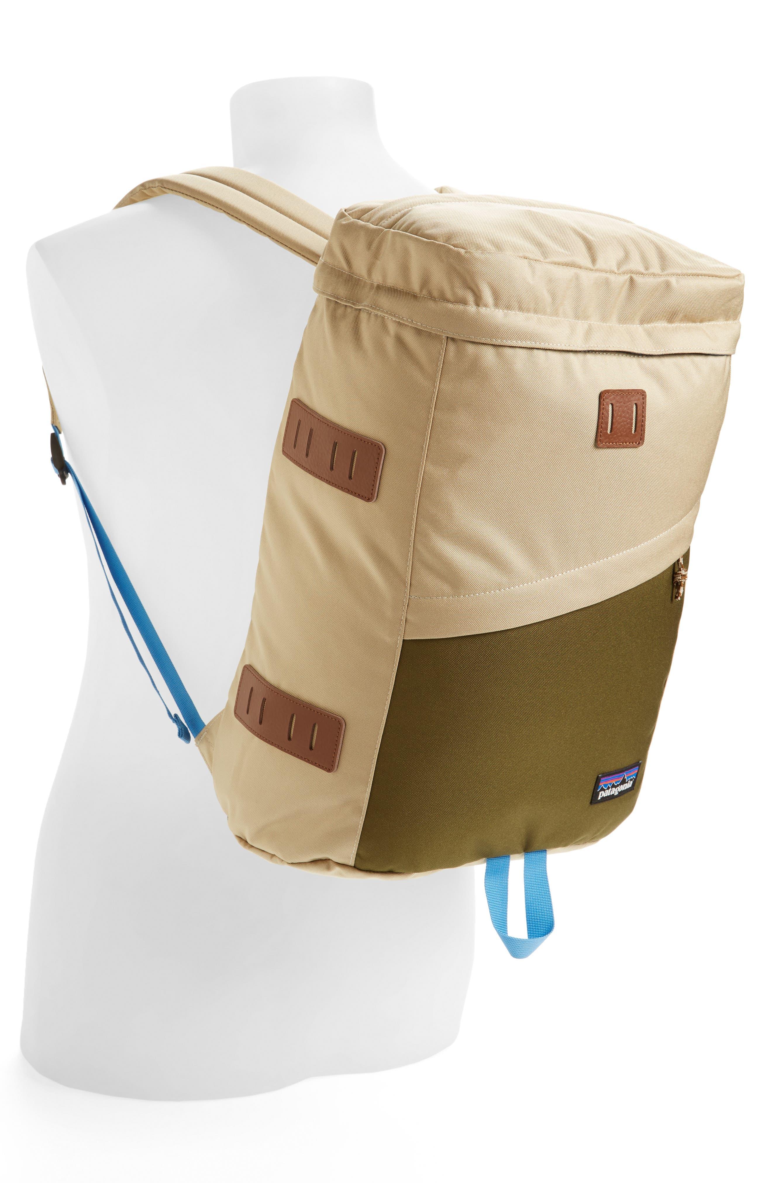 Alternate Image 2  - Patagonia 'Toromiro' Backpack (22 Liter)