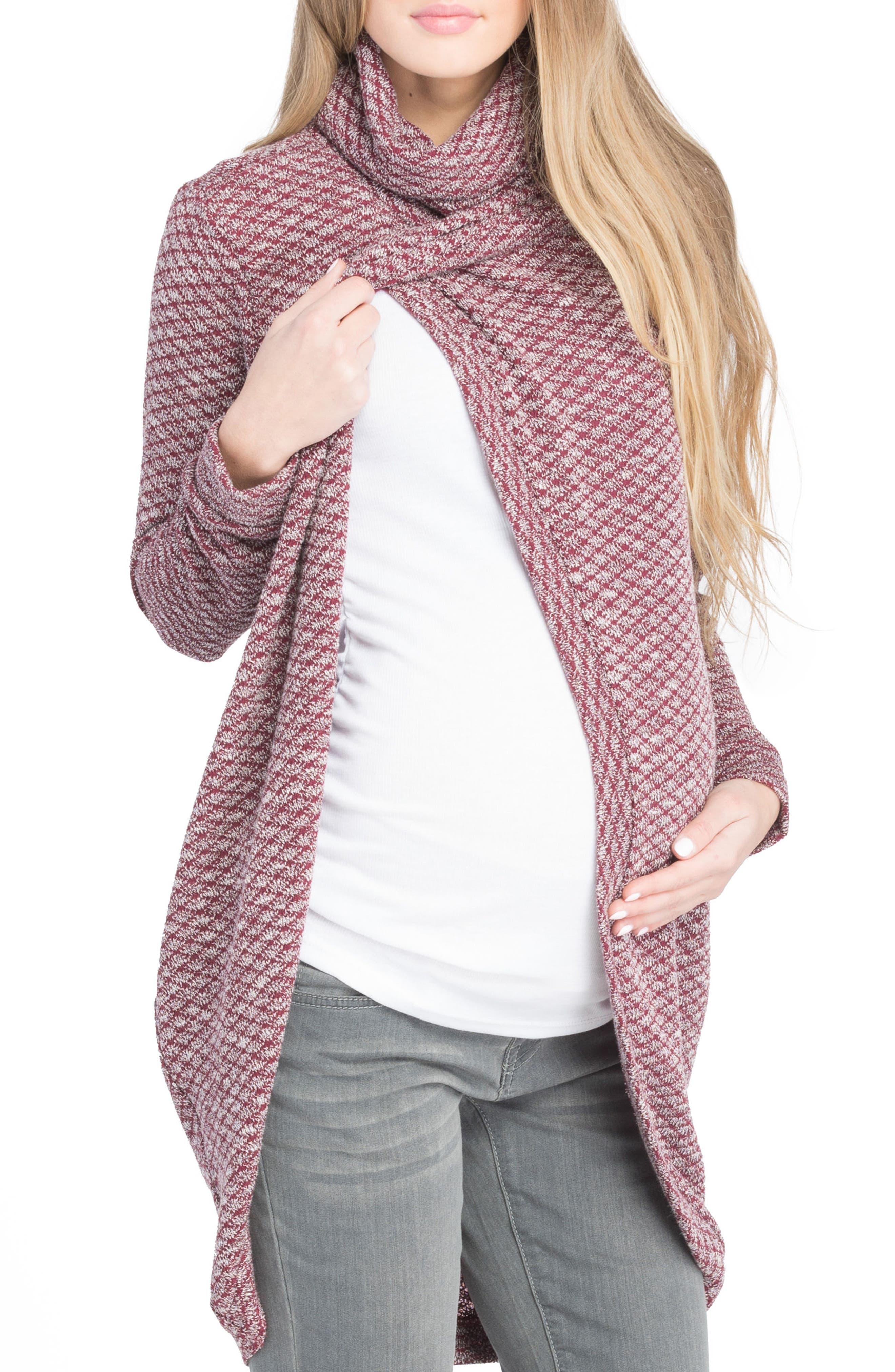 Alternate Image 4  - Lilac Clothing Nursing Tunic Sweater