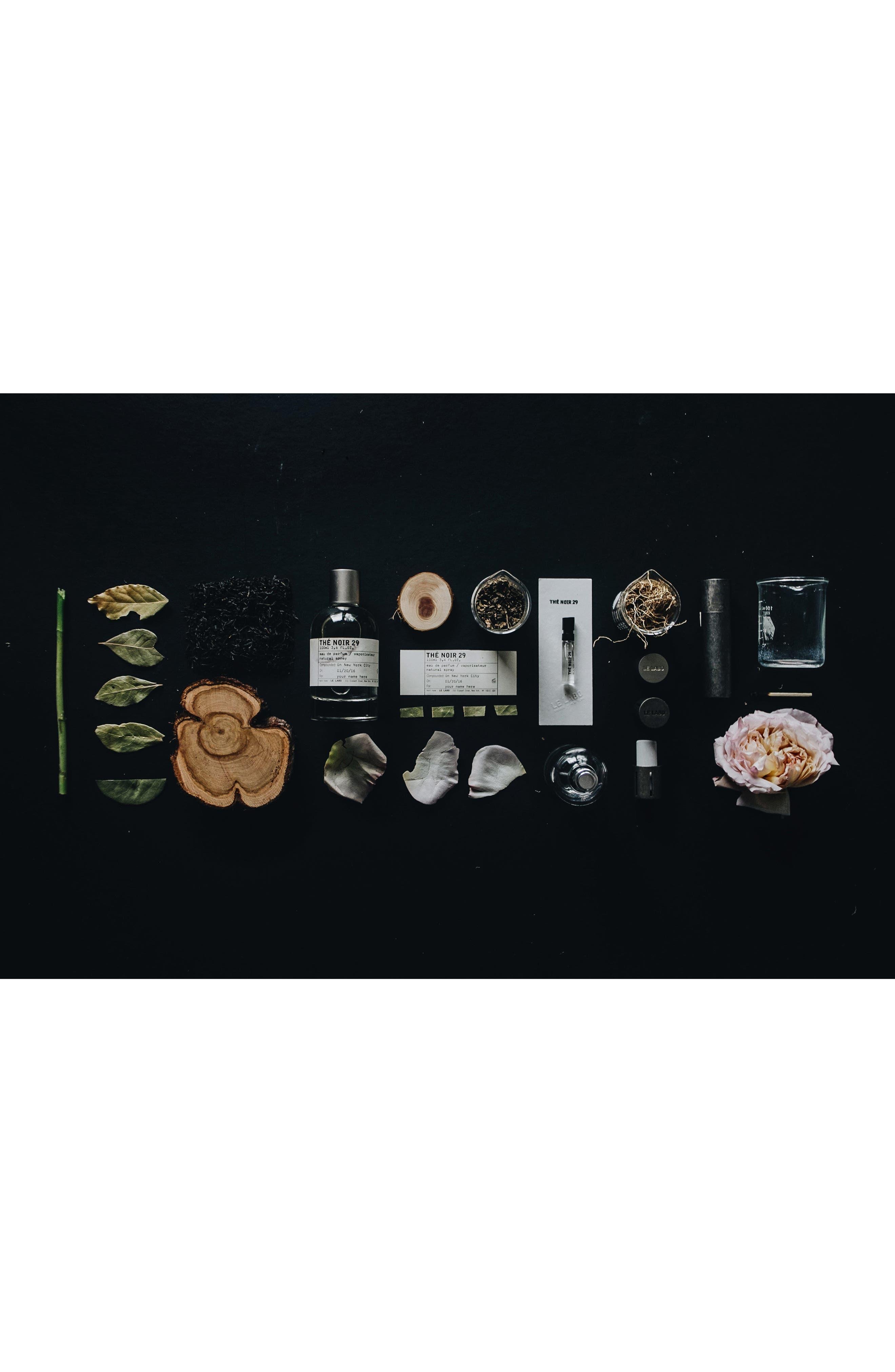 Alternate Image 9  - Le Labo 'Thé Noir 29' Eau de Parfum