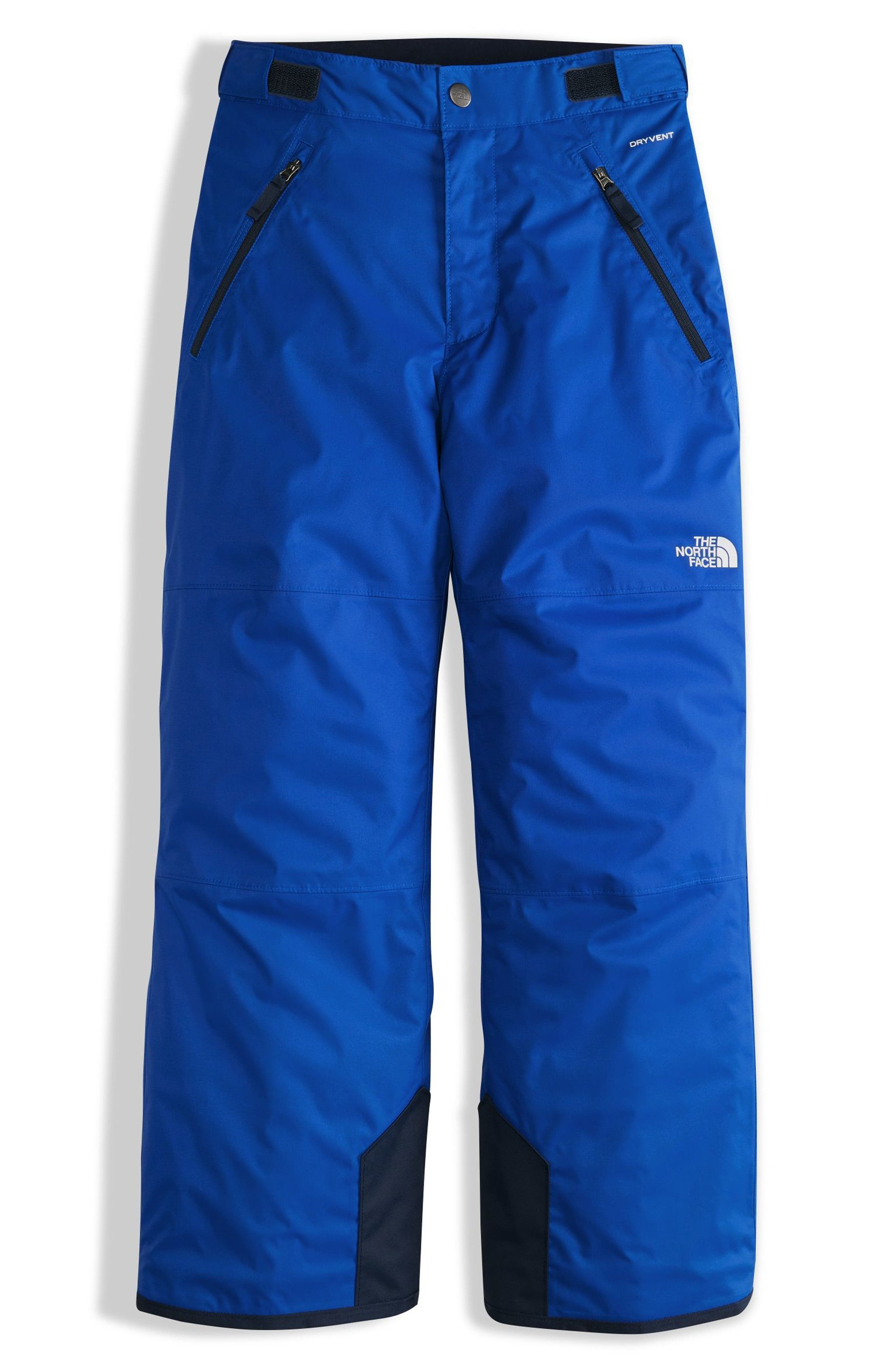 The North Face Freedom Waterproof Insulated Pants (Big Boys)