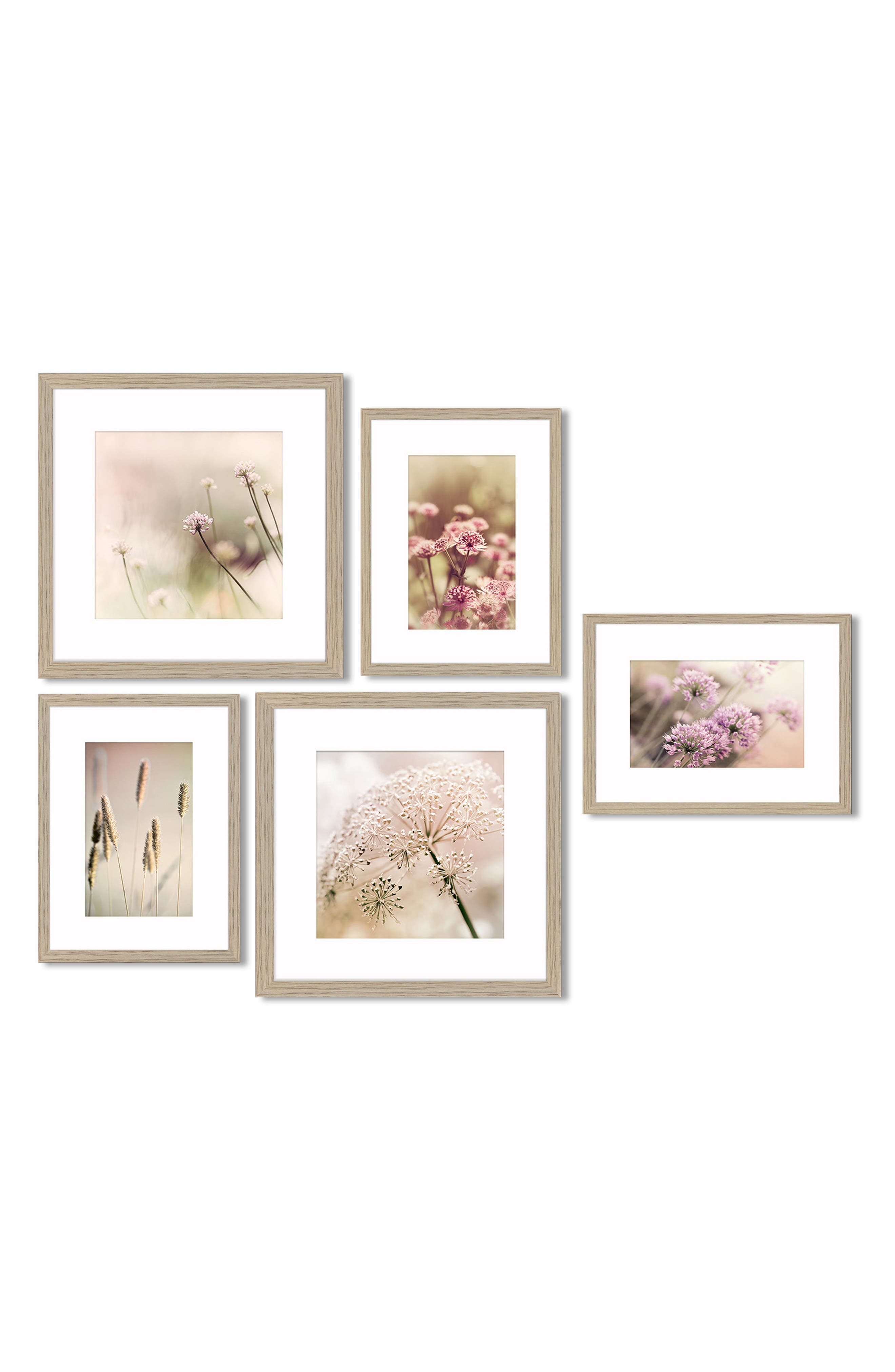 5-Piece Framed Wall Art Gallery,                         Main,                         color, Soft Floral