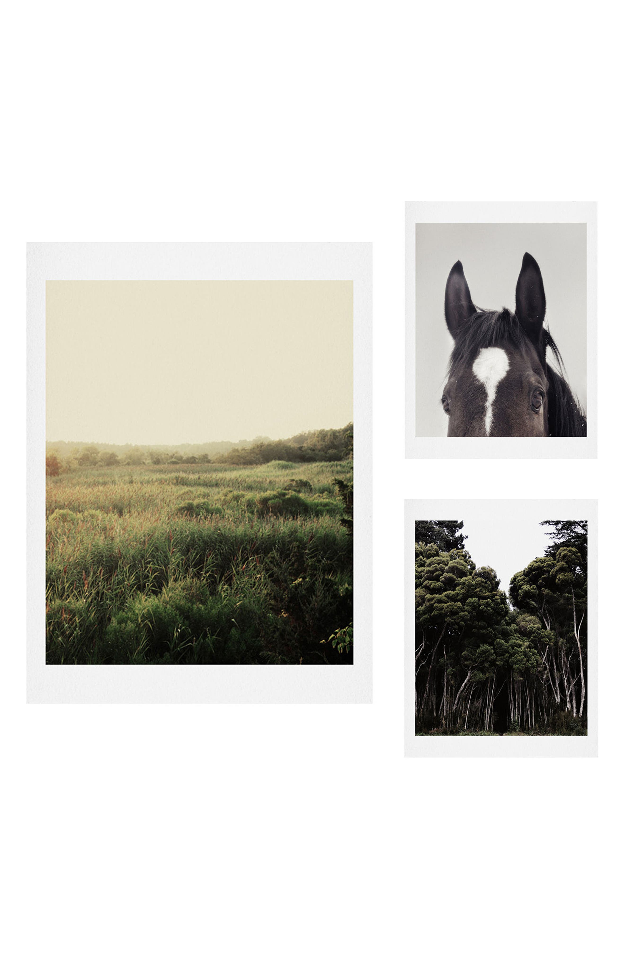 The Meadow 3-Piece Gallery Wall Art Print Set,                         Main,                         color, Green