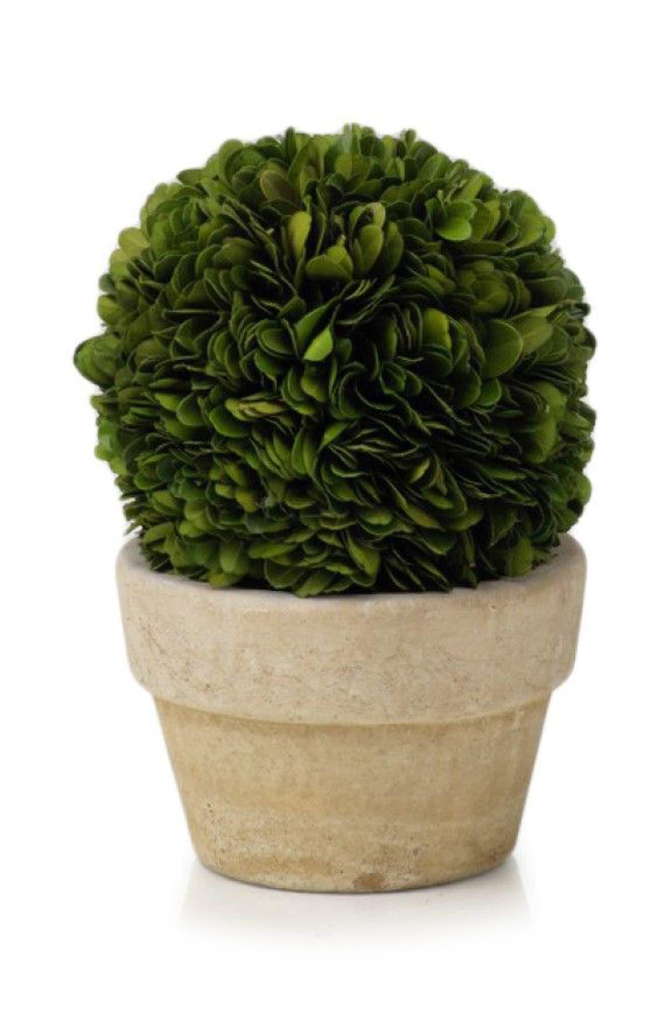 Boxwood Topiary Decoration,                             Main thumbnail 1, color,                             Green/ Gray