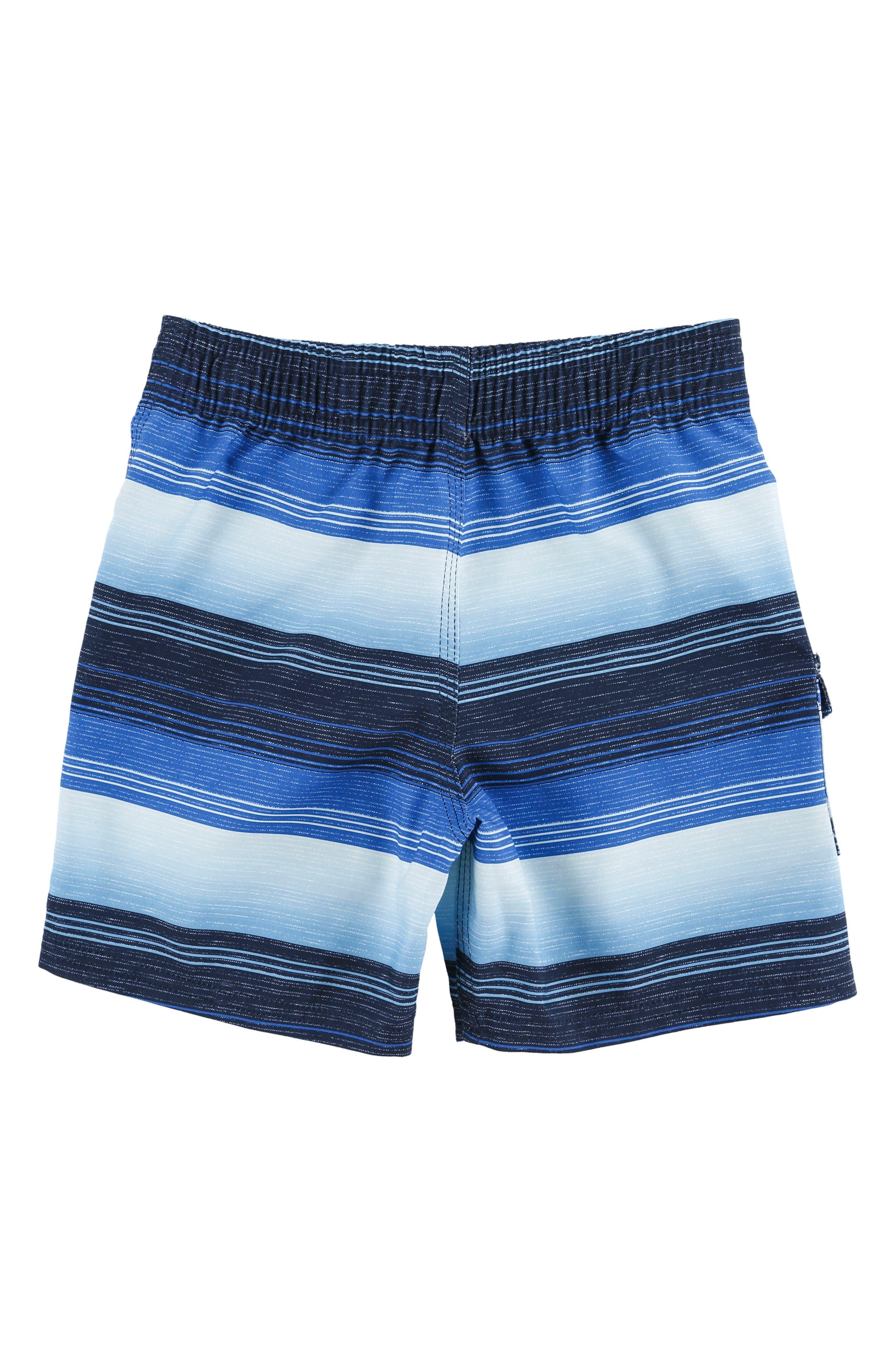 Santa Cruz Stripe Board Shorts,                             Alternate thumbnail 2, color,                             Blue