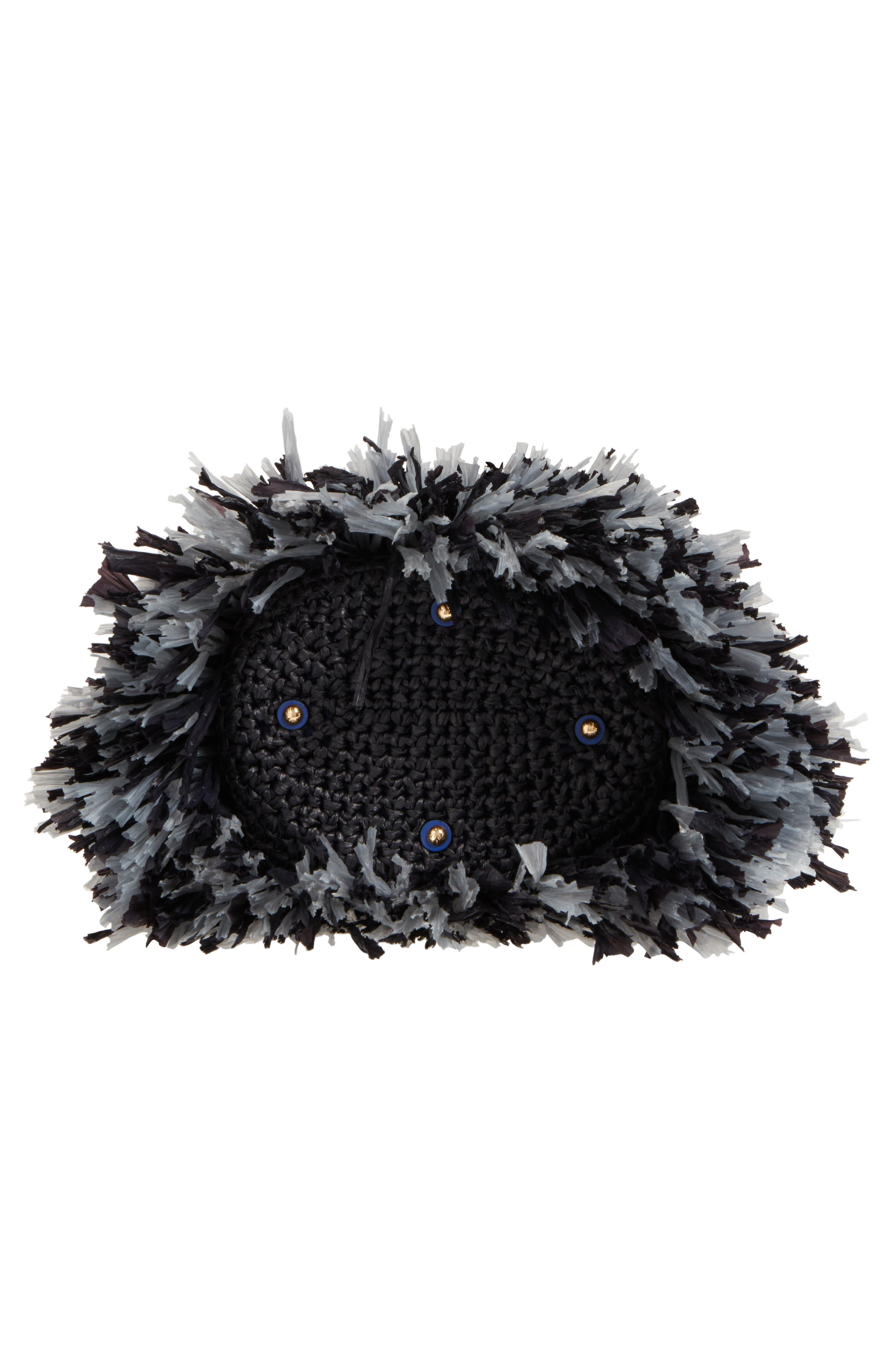 Alternate Image 6  - Diane von Furstenberg Raffia Fringe Bucket Bag