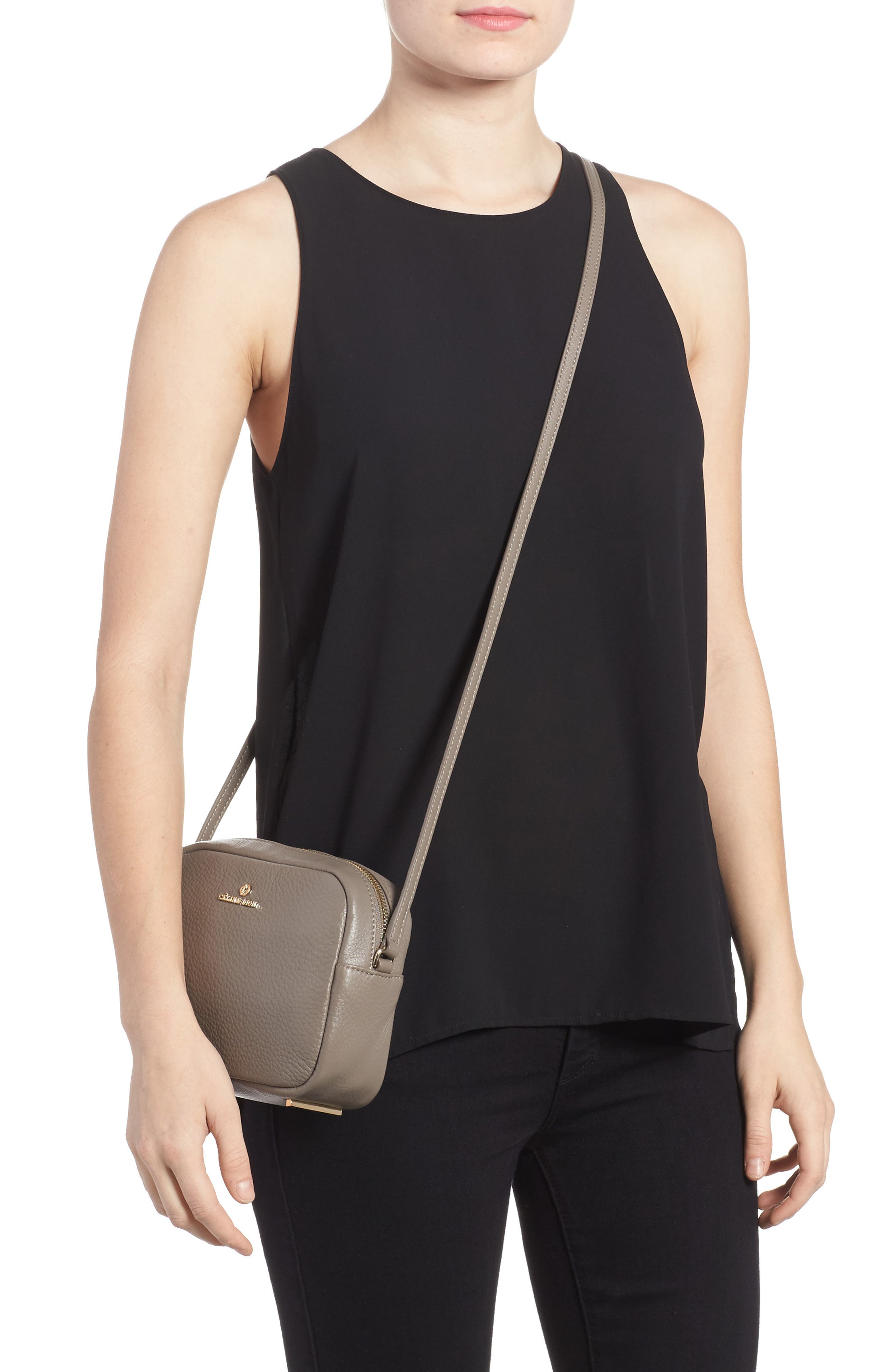 Céline Dion Adagio Leather Camera Crossbody Bag,                             Alternate thumbnail 2, color,                             Taupe