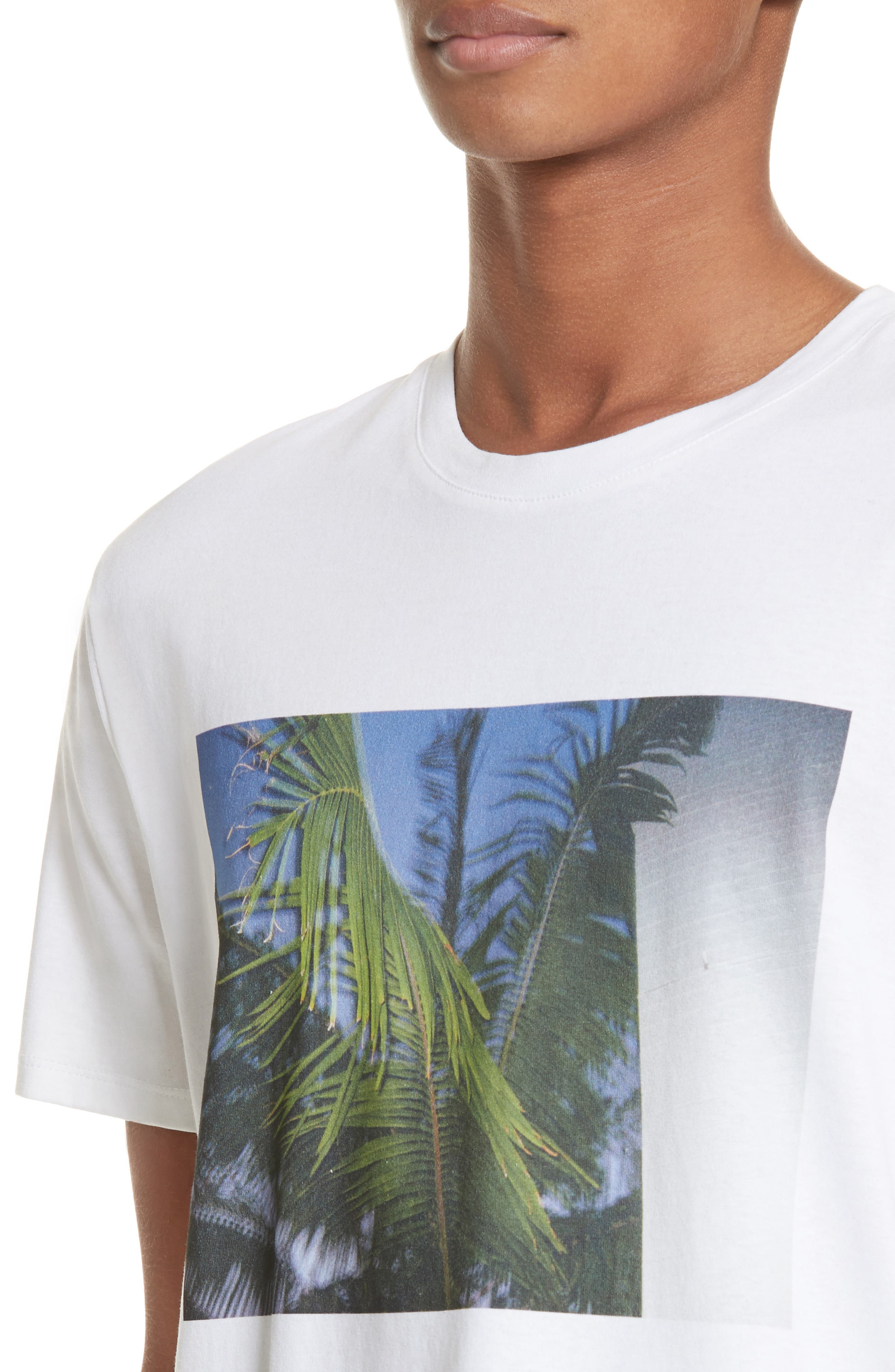 Palm Tree Graphic T-Shirt,                             Alternate thumbnail 4, color,                             Blanc Aab