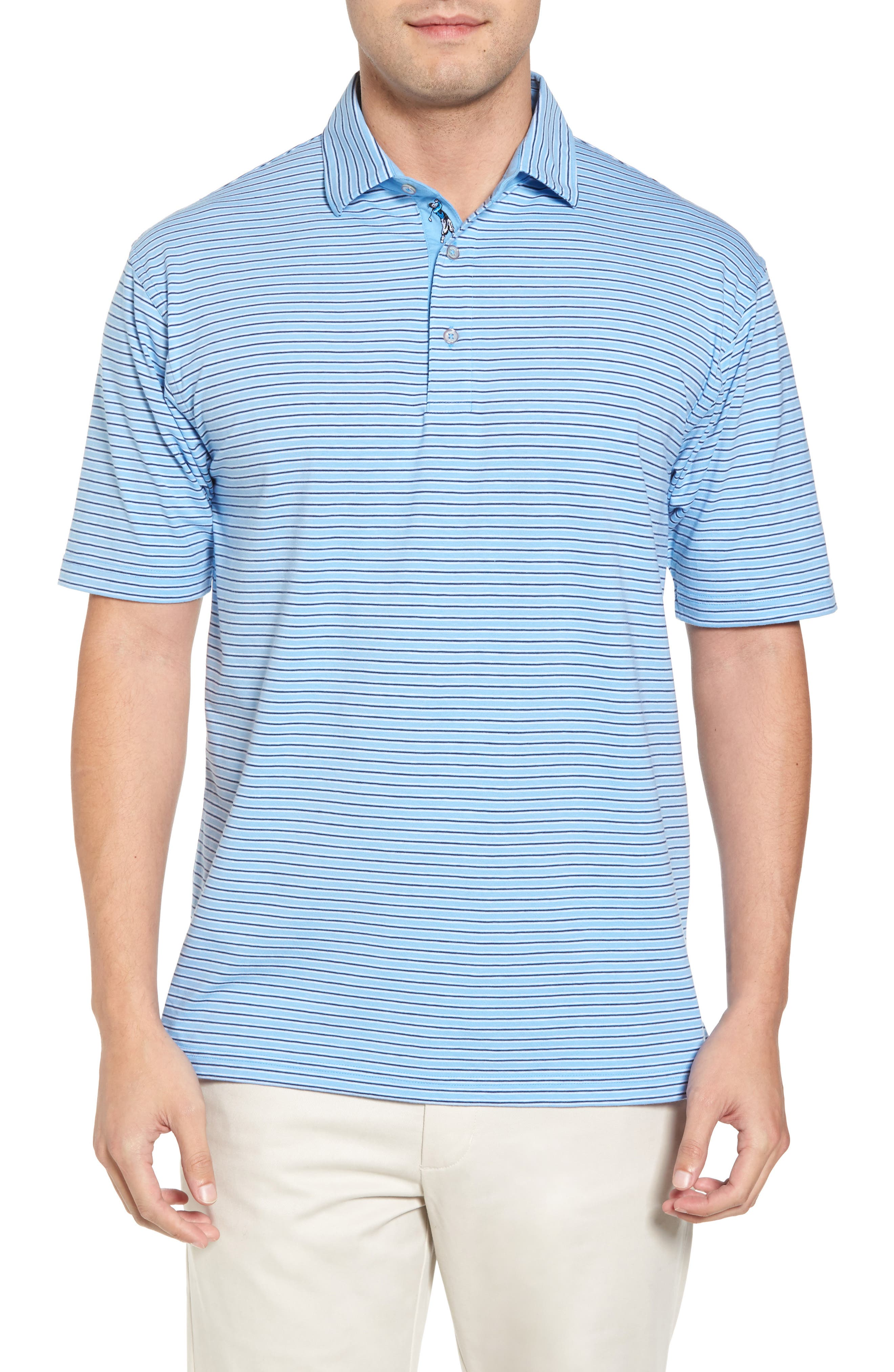 Crest Stripe Polo,                         Main,                         color, Sky Blue