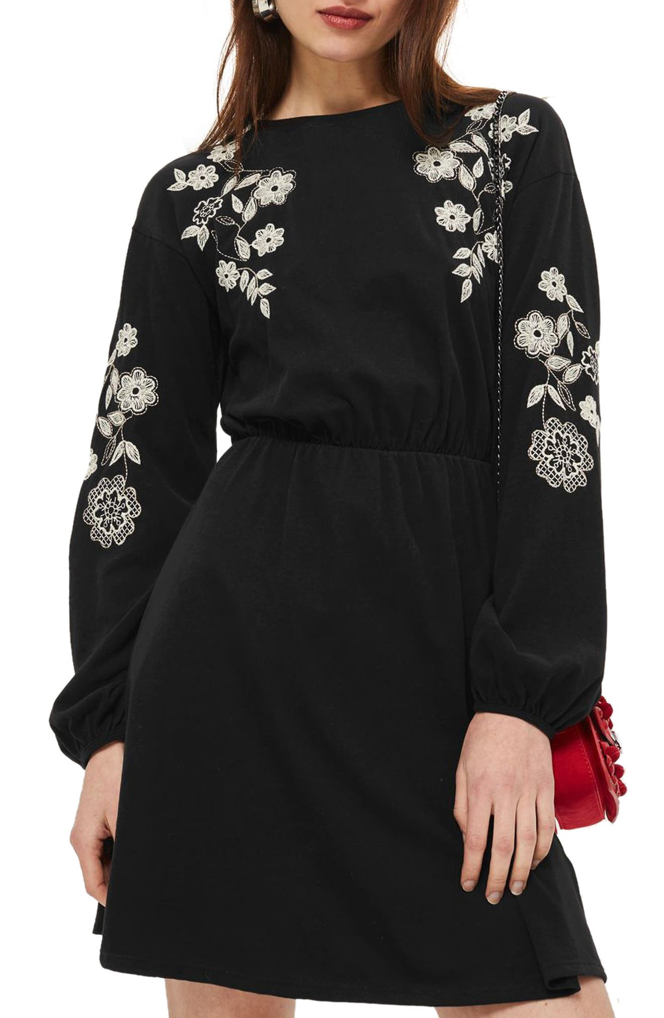 Embroidered Balloon Sleeve Skater Dress,                         Main,                         color, Black