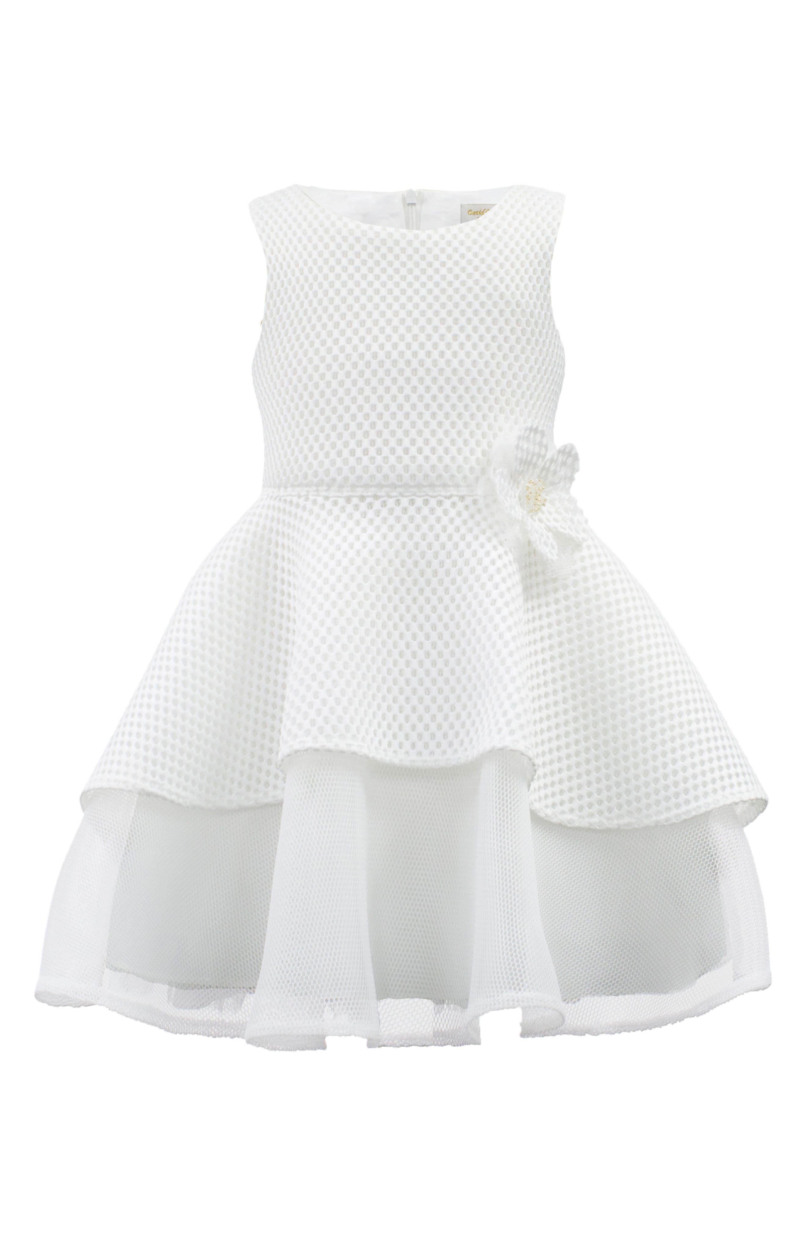 David Charles Techno Mesh Fit & Flare Dress (Toddler Girls, Little Girls & Big Girls)